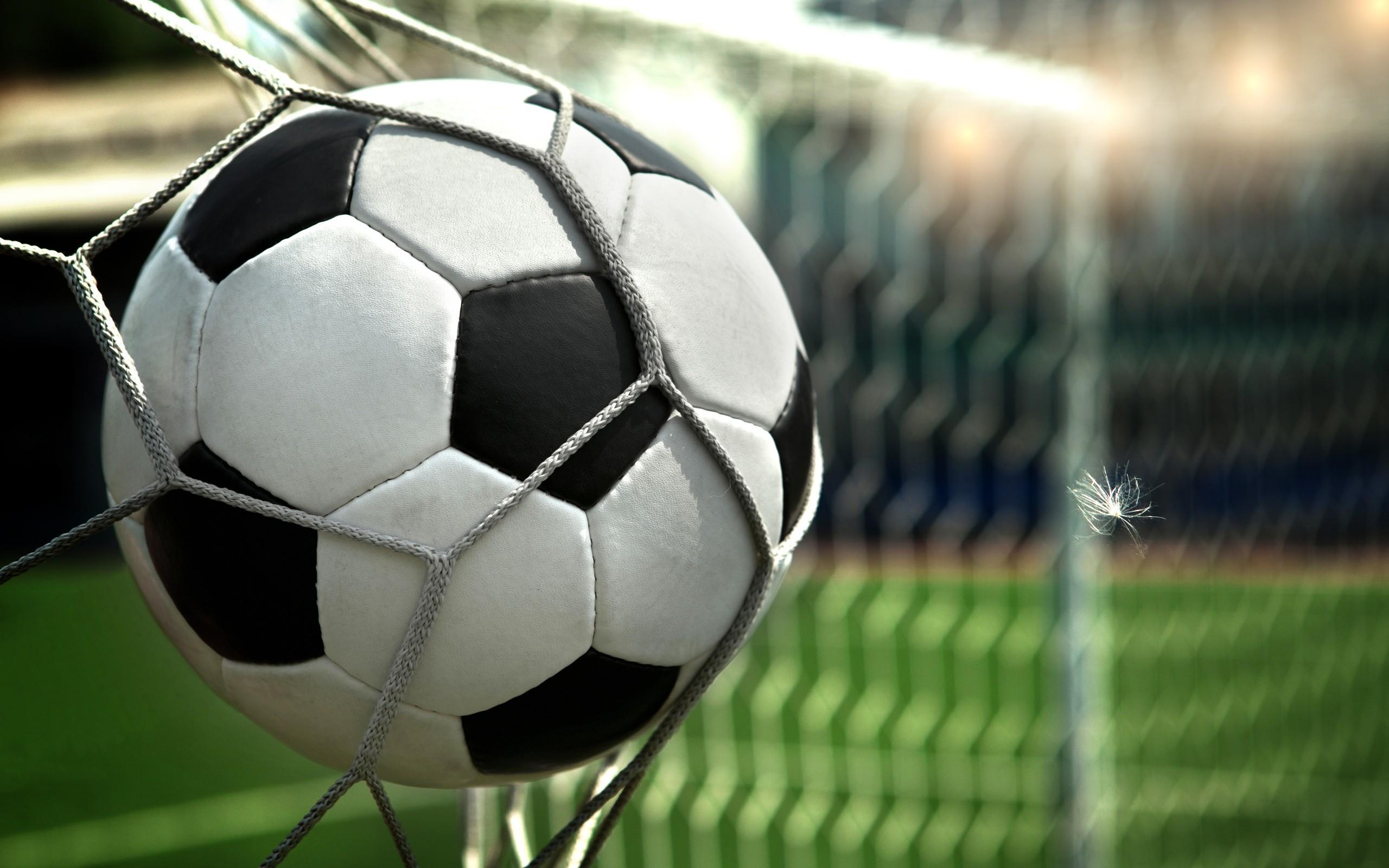 Wallpaper Feather, Football, Goal, Ball, Net