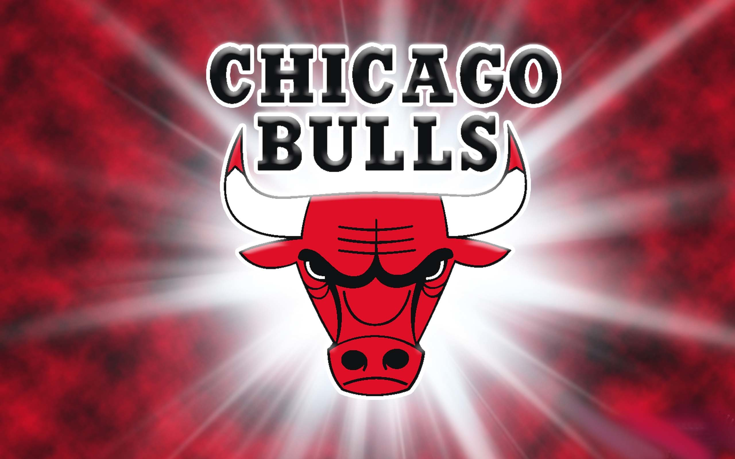 American professional basketball team Chicago Bulls