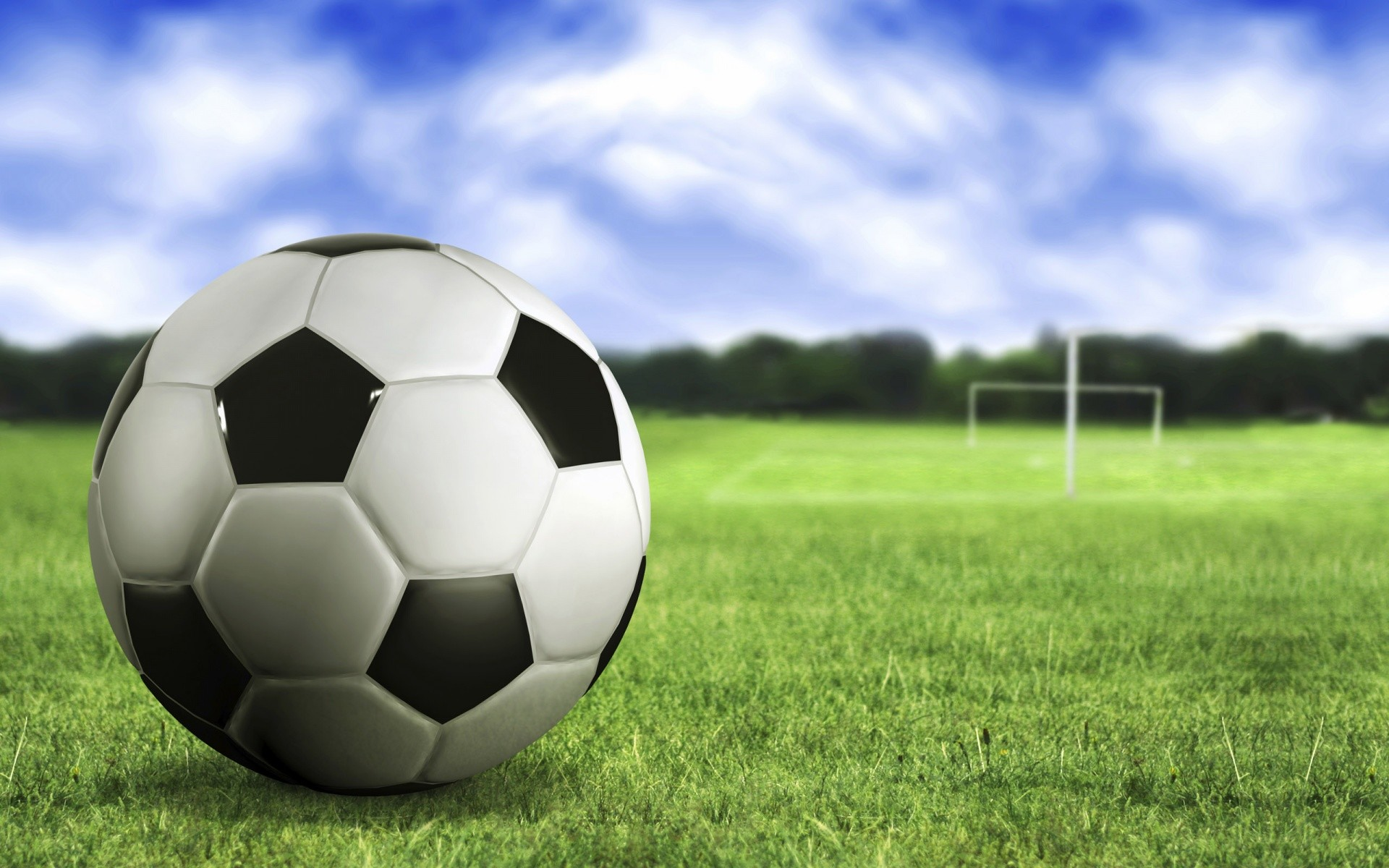 Soccer ball on the grass wallpapers and stock photos