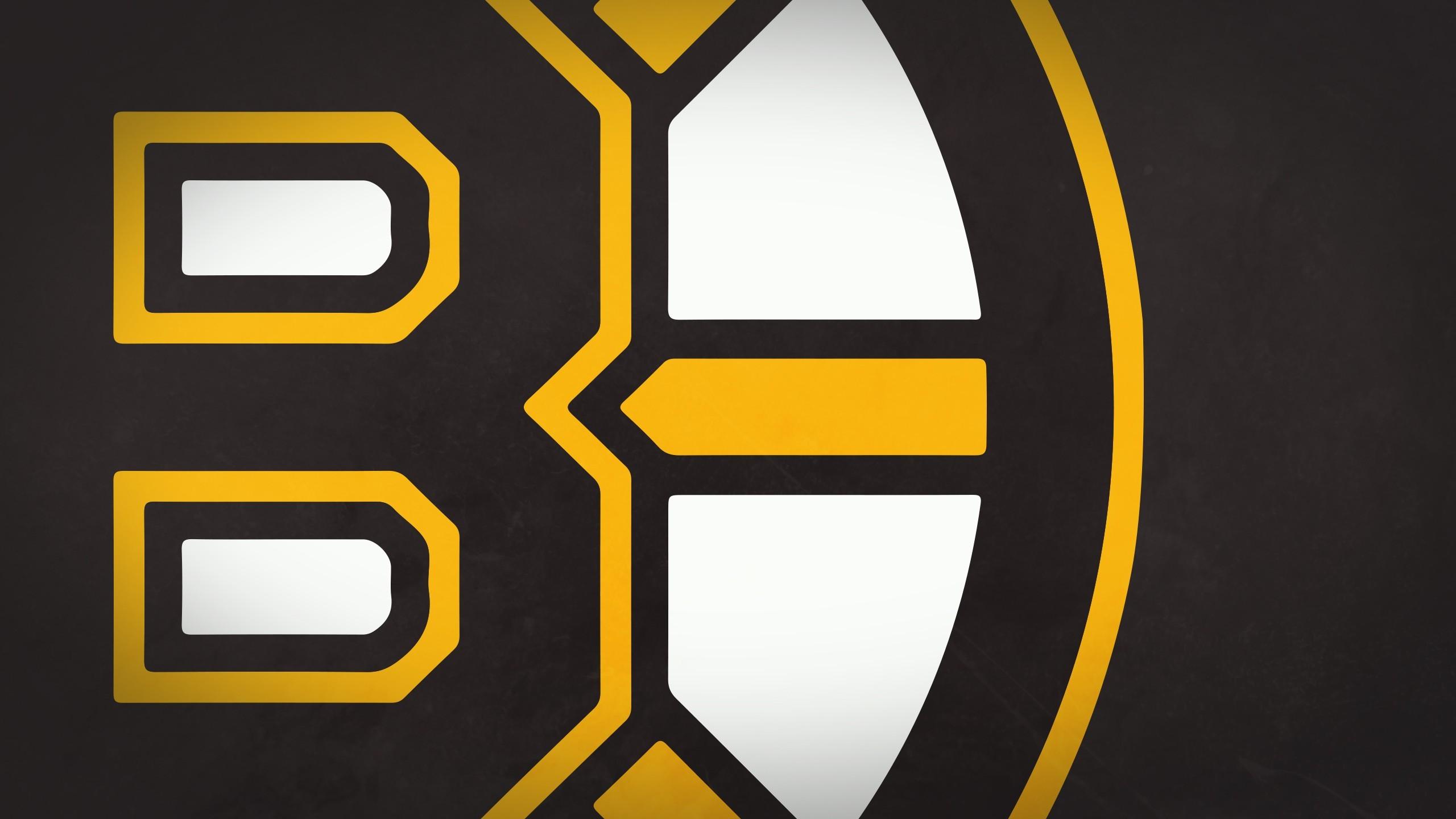 HD Wallpaper   Background ID:415082. Sports Boston Bruins. 0  Like. Favorite