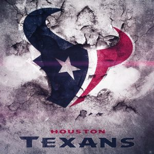Houston Texans iPhone