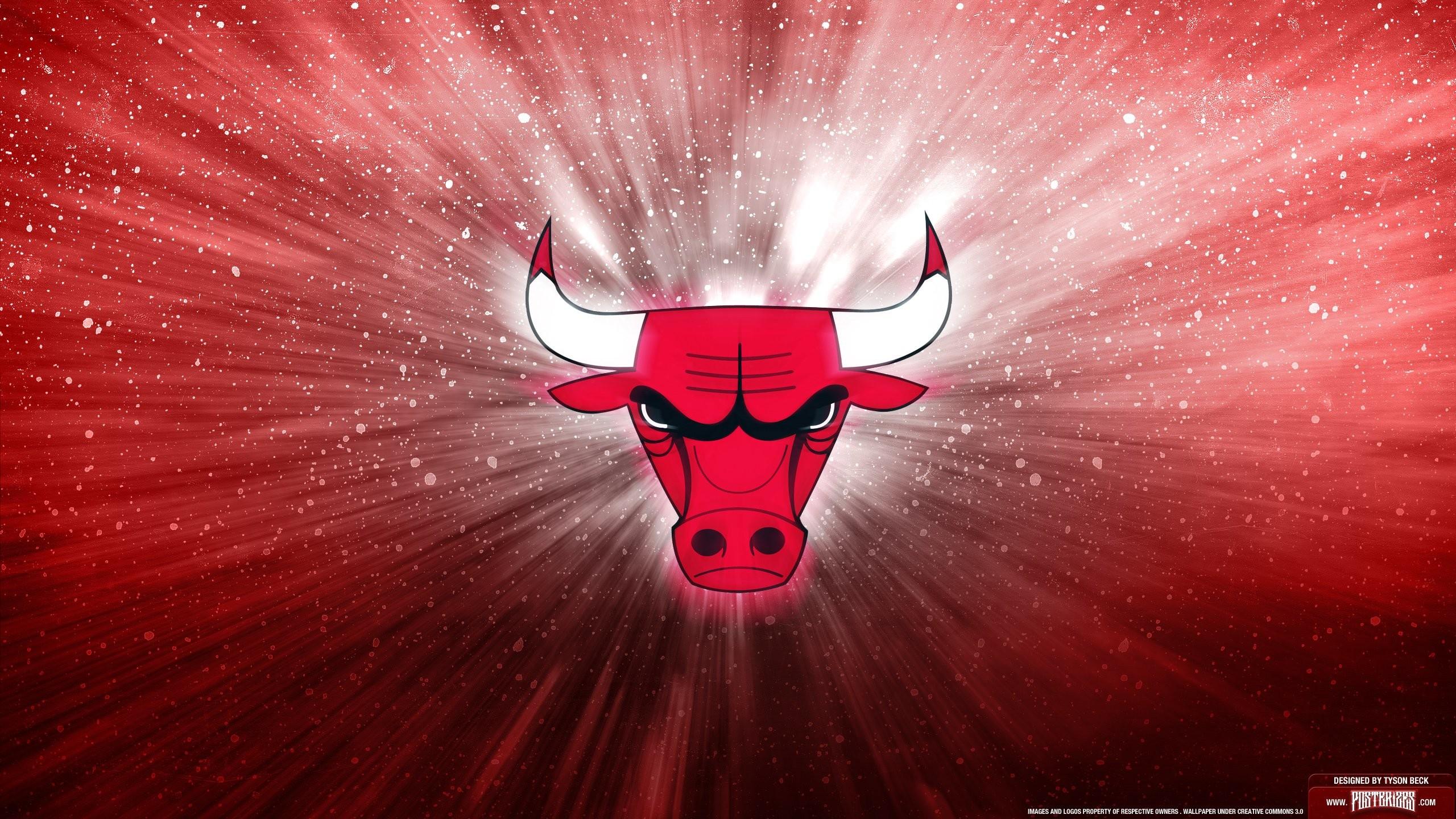 Chicago Bulls Logo 757588