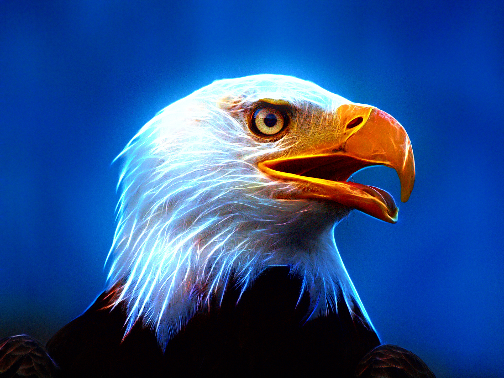 Nfl Eagles Wallpaper   HD Wallpapers   Pinterest   Wallpaper and deviantART