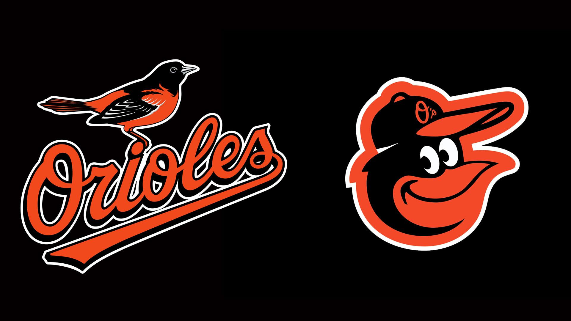 11 HD Baltimore Orioles Desktop Wallpapers For Free Download
