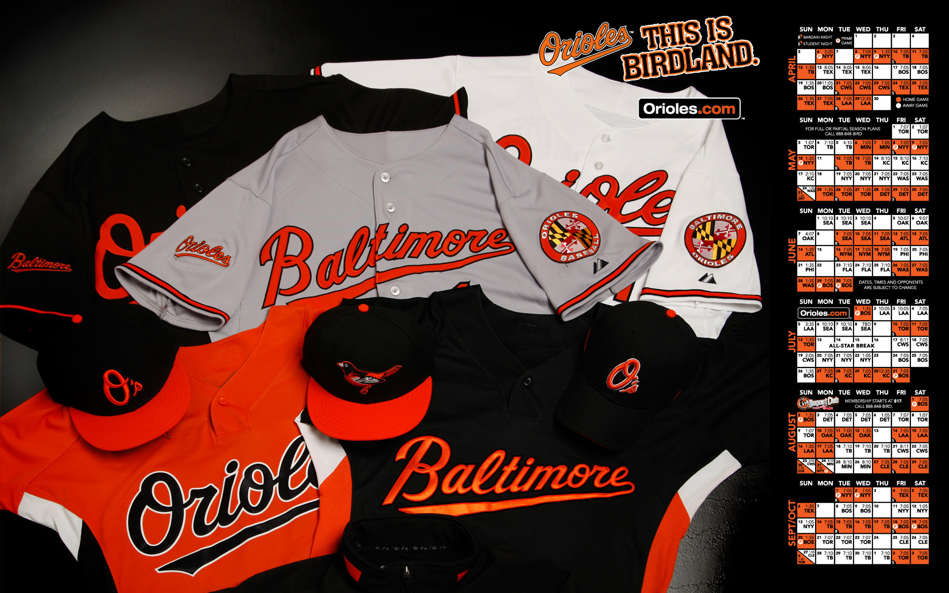 orioes | baltimore orioles wallpaper Images and Graphics