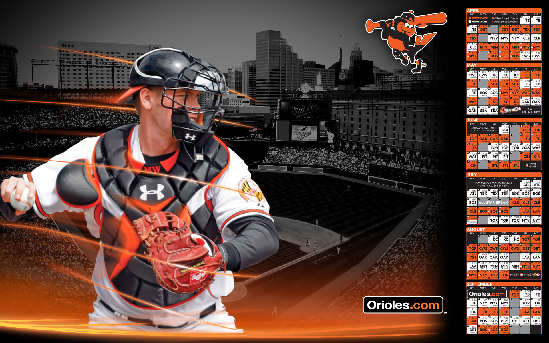 Baltimore Orioles Backgrounds wallpaper – 378371