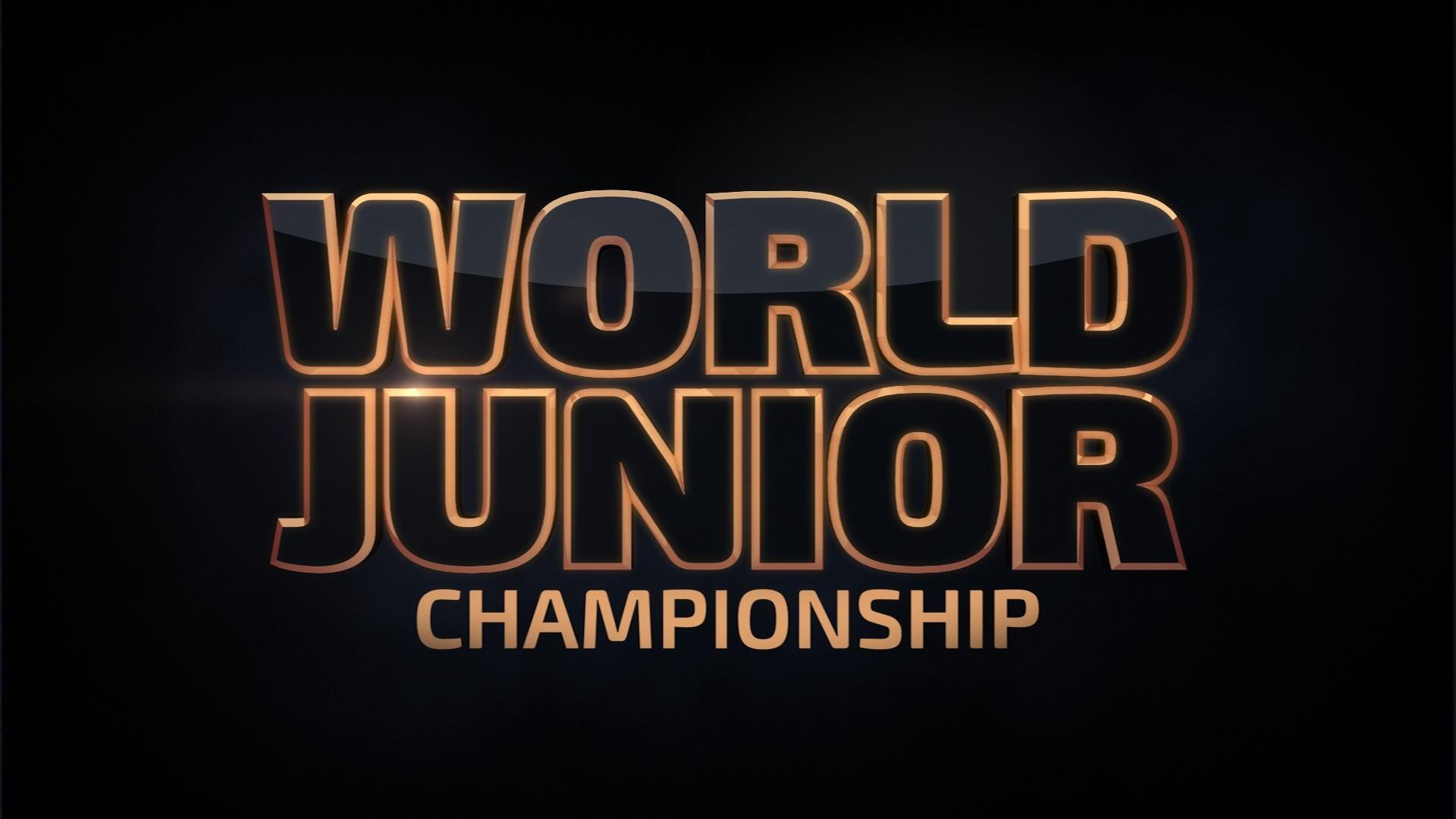 USA HOCKEY SELECTS BUFFALO SABRES AS HOST OF 2018 IIHF WORLD JUNIOR  CHAMPIONSHIP