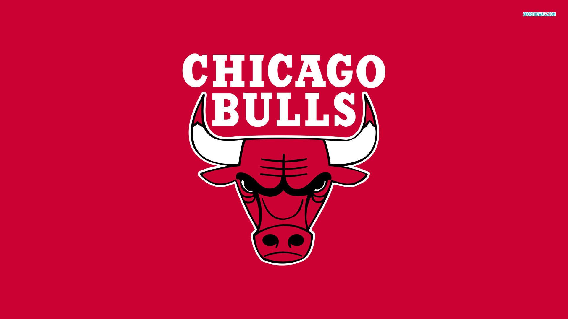 chicago bulls wallpapers HD