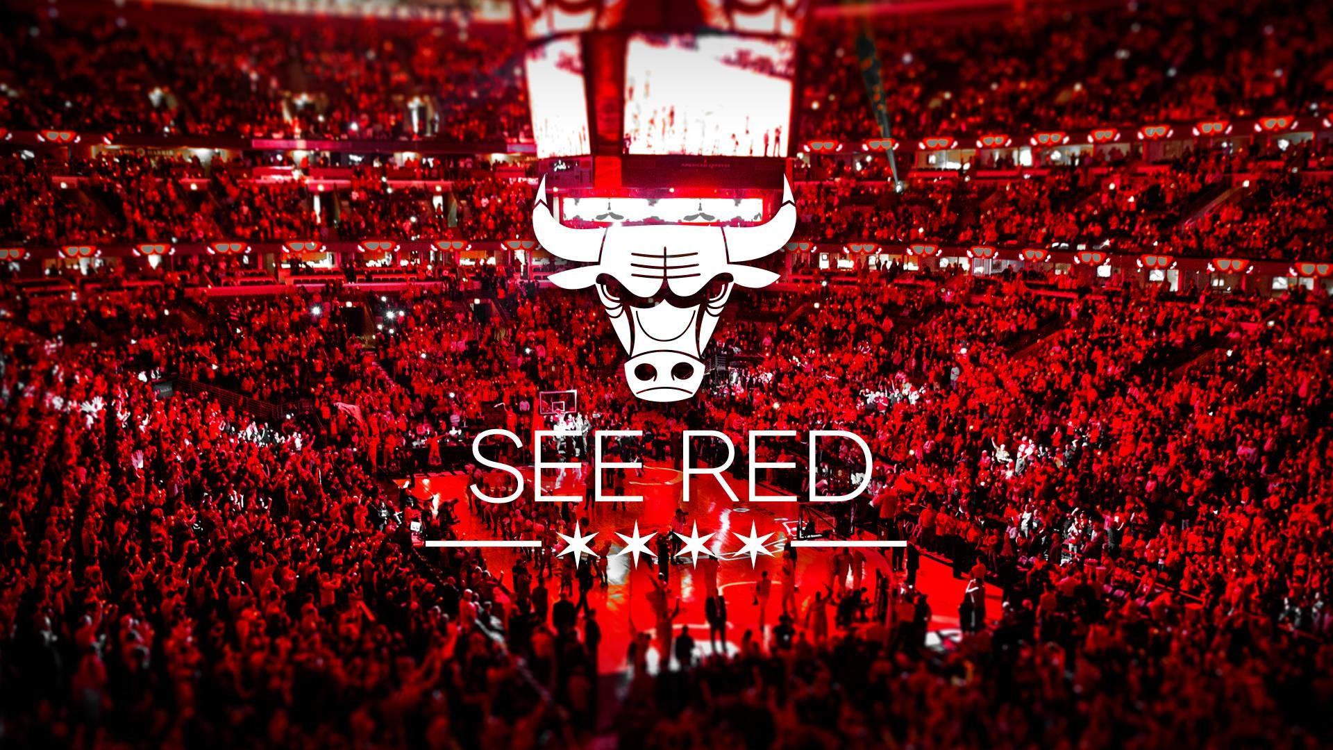 Chicago Bulls HD Wallpaper – WallpaperSafari