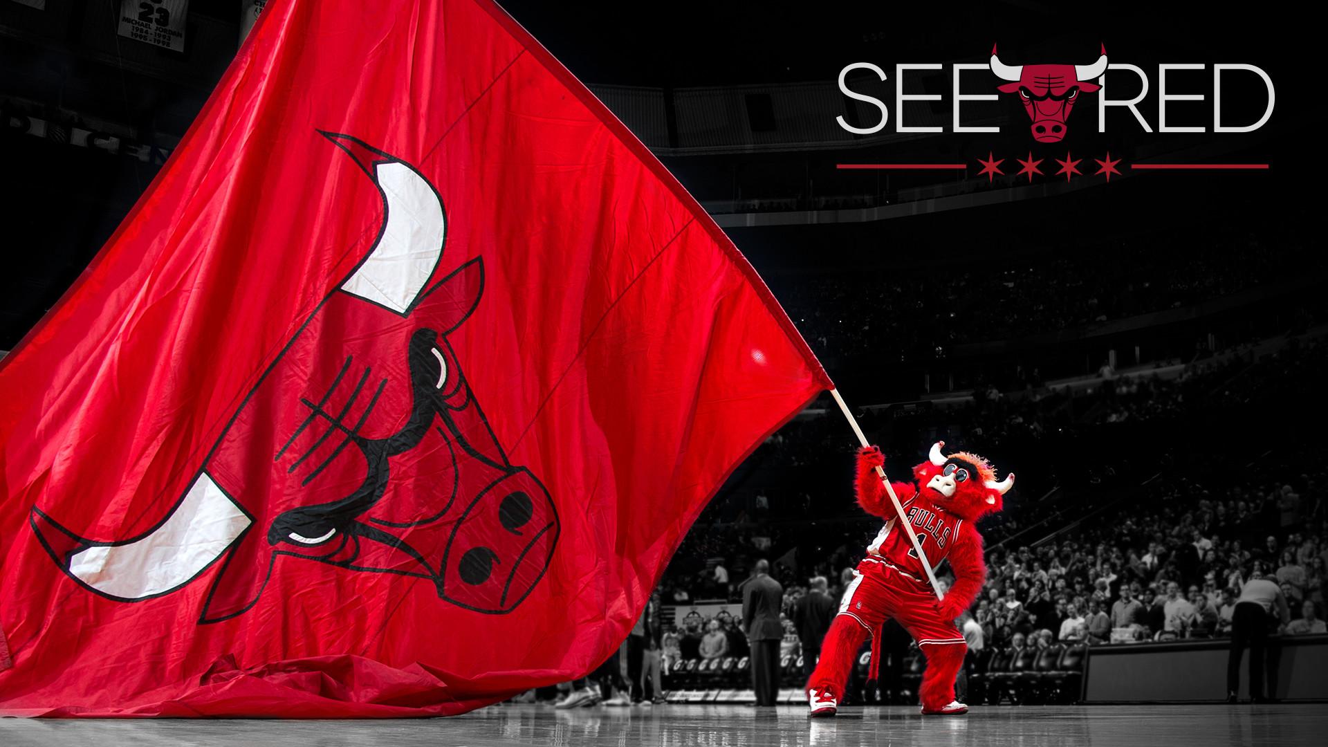 Chicago Bulls | 2014 NBA Playoffs | See Red