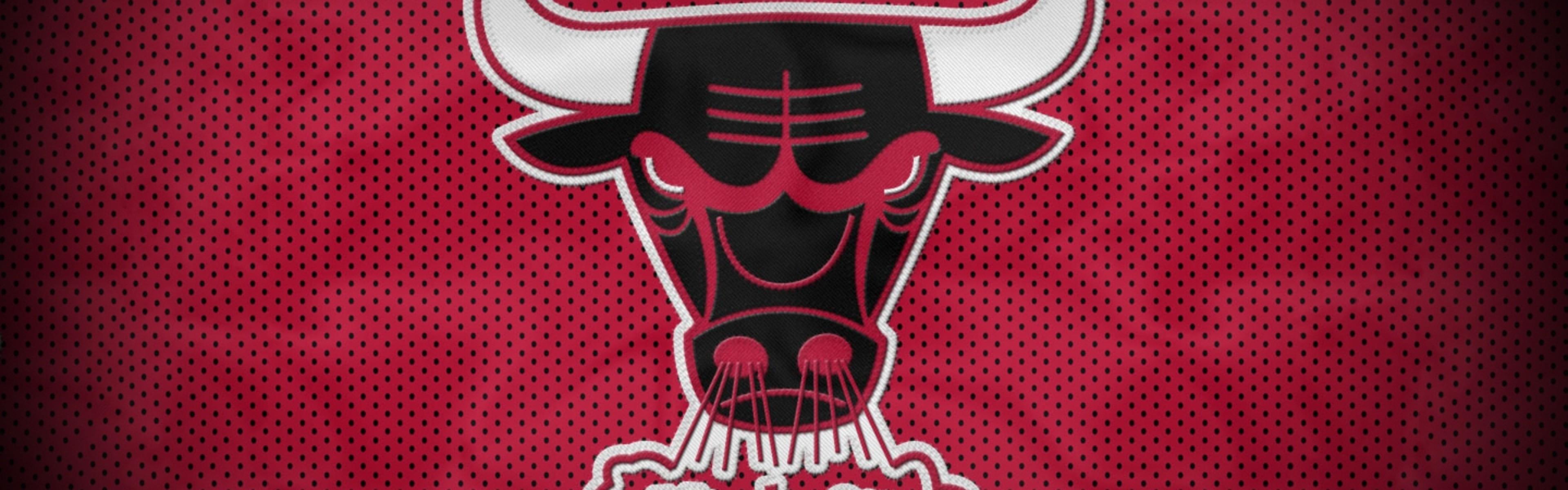 Wallpaper chicago bulls, bull, basketball, club, sport