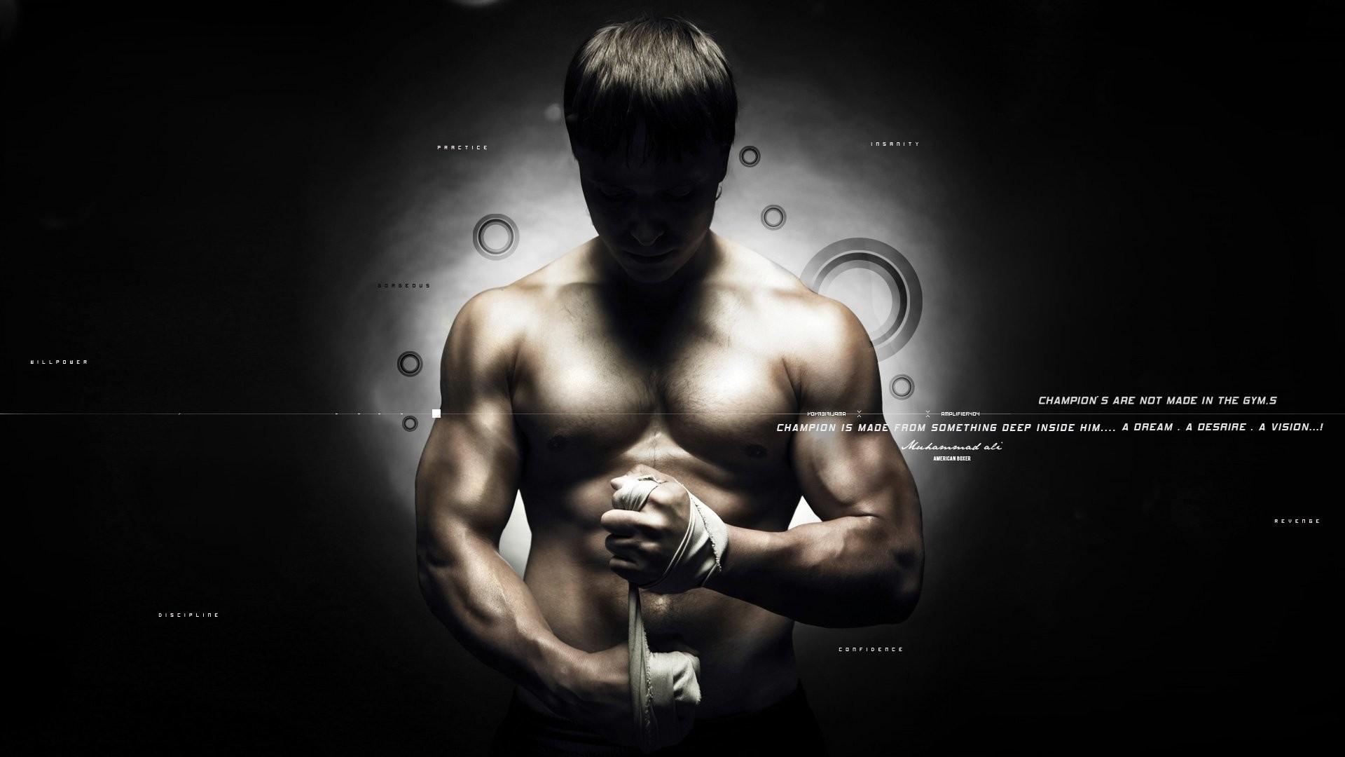 HD Wallpaper   Background ID:202715. Sports MMA