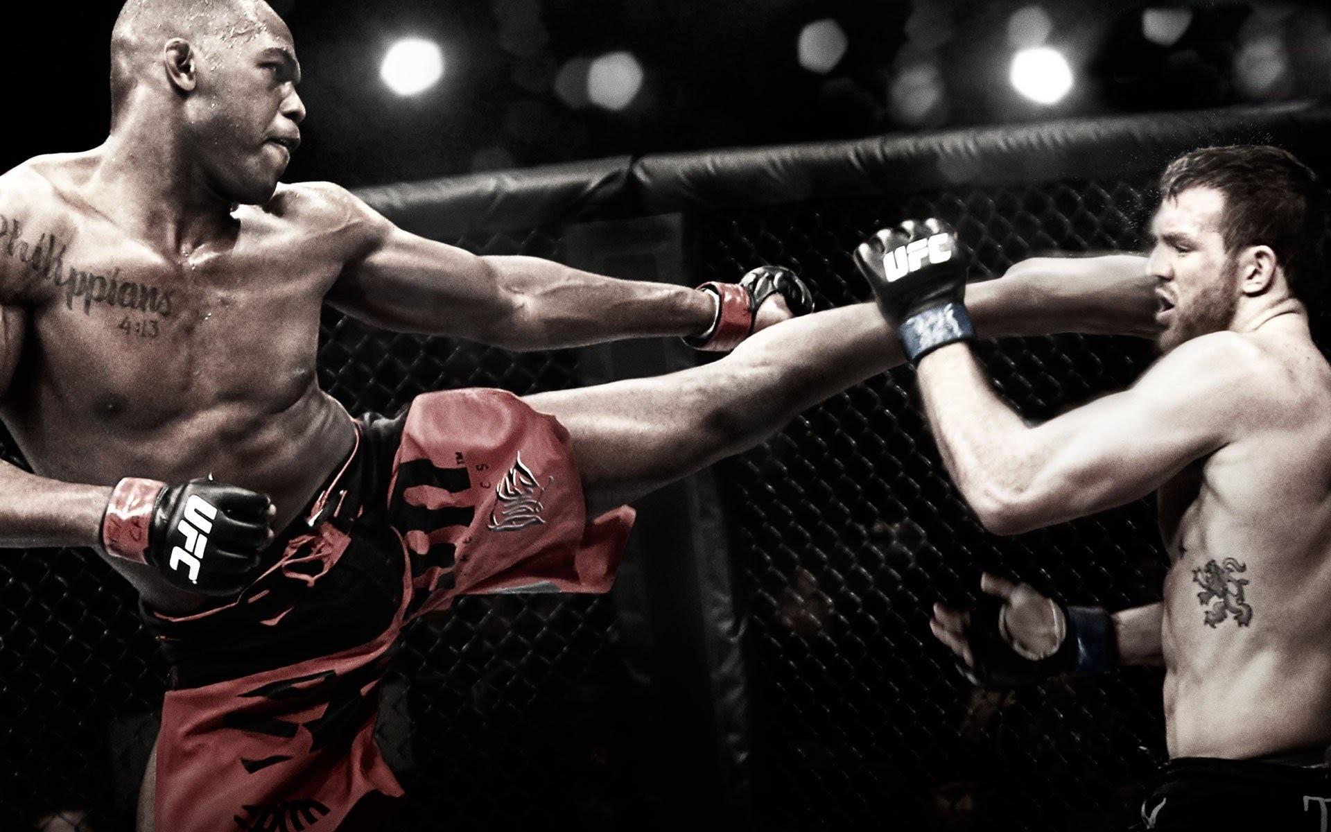 Mixed Martial Arts HD Images 04399