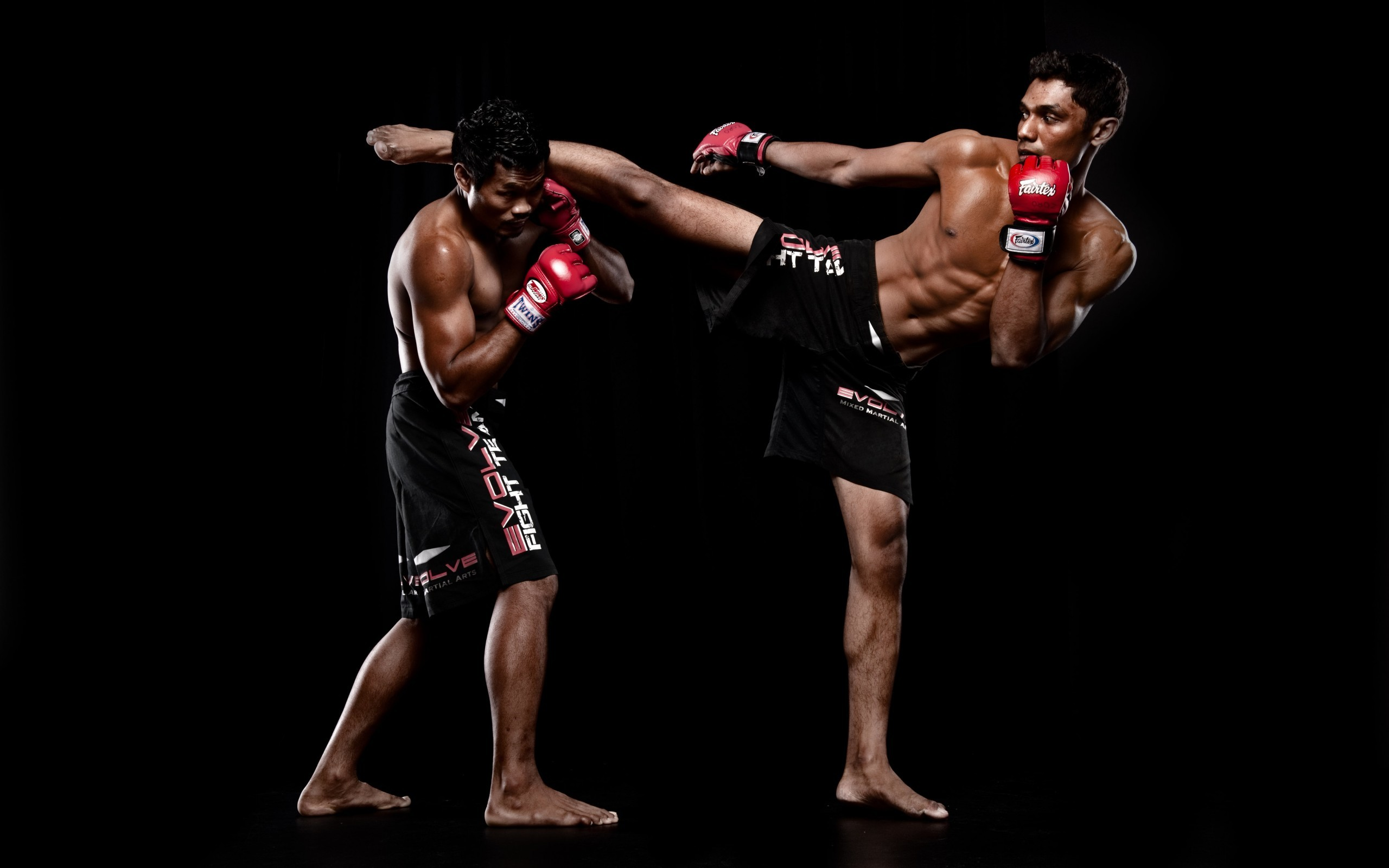 Mixed Martial Arts HD Pictures 04401