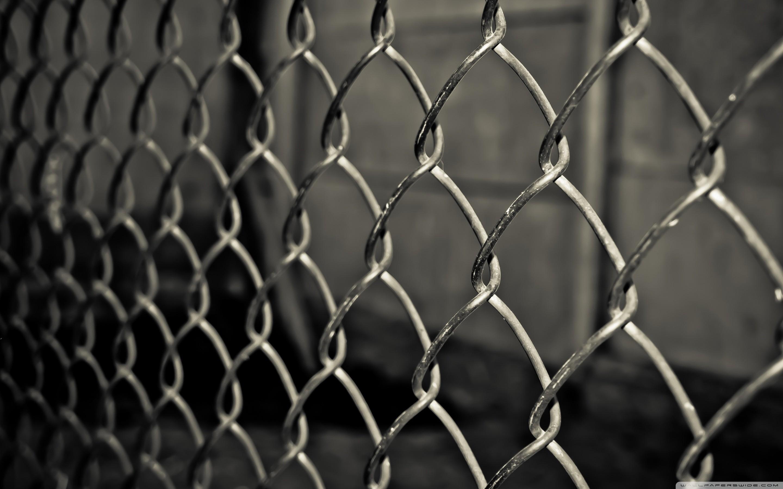 grid_fence-wallpaper-2880×1800