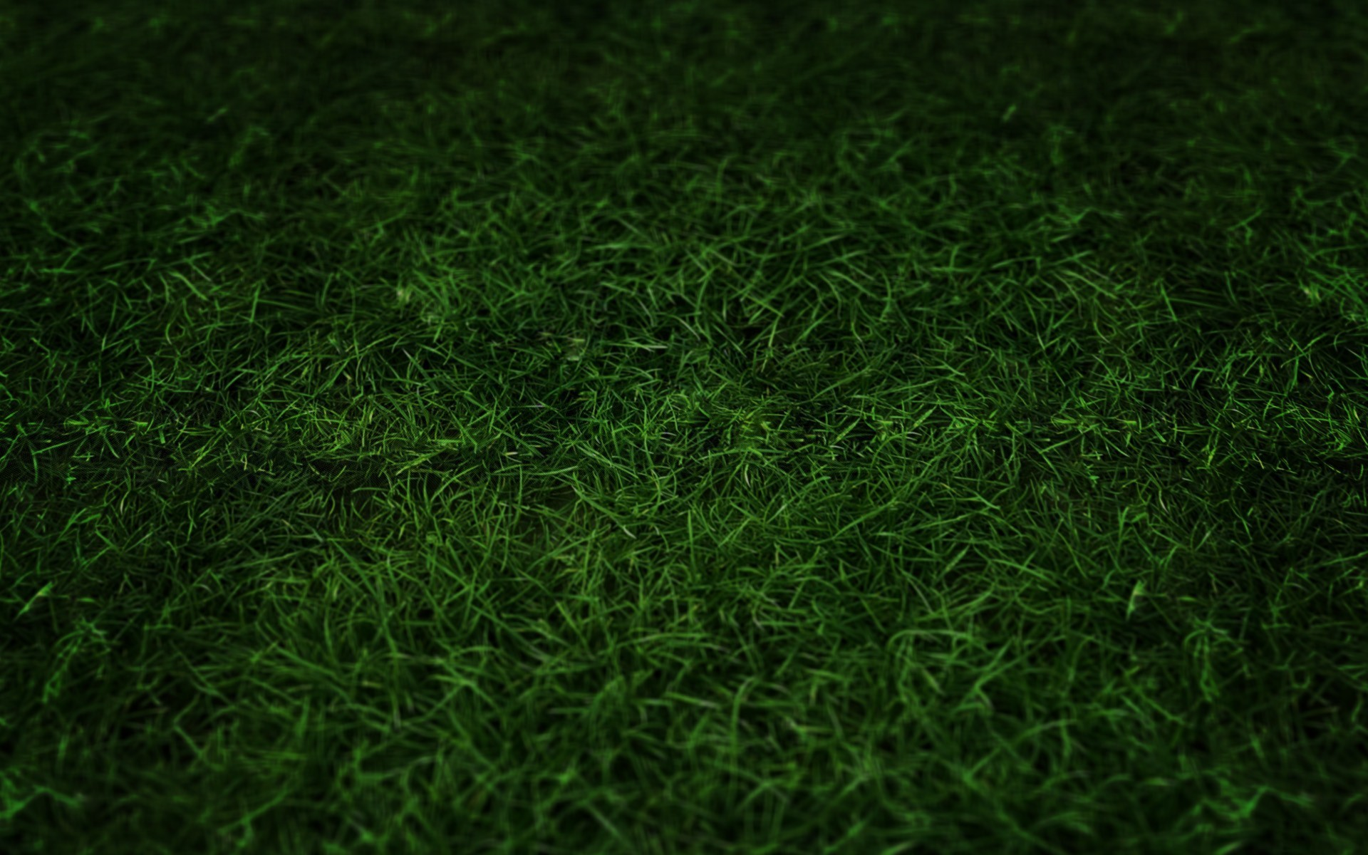 Football Field Grass Wallpaper Green grass 1280×800 wallpaper