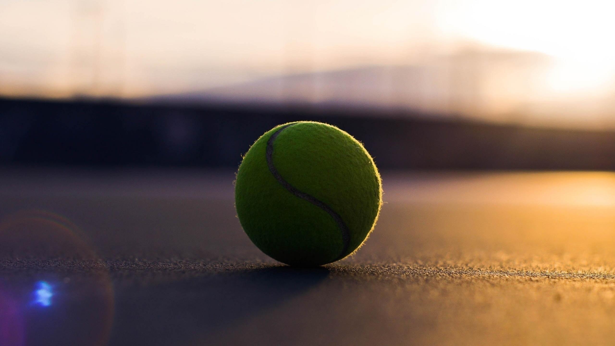 HD Wallpaper   Background ID:462435. Sports Tennis