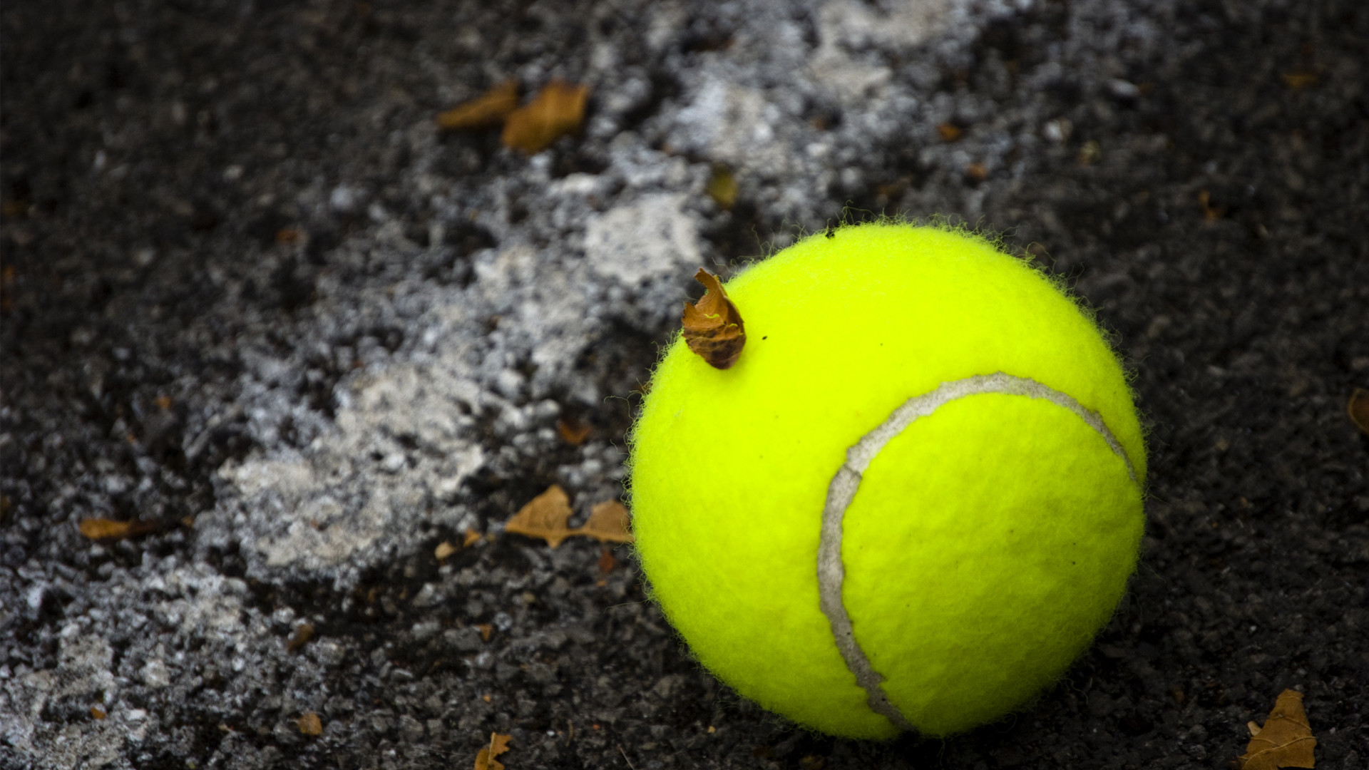 Tennis HD Wallpapers Free Download