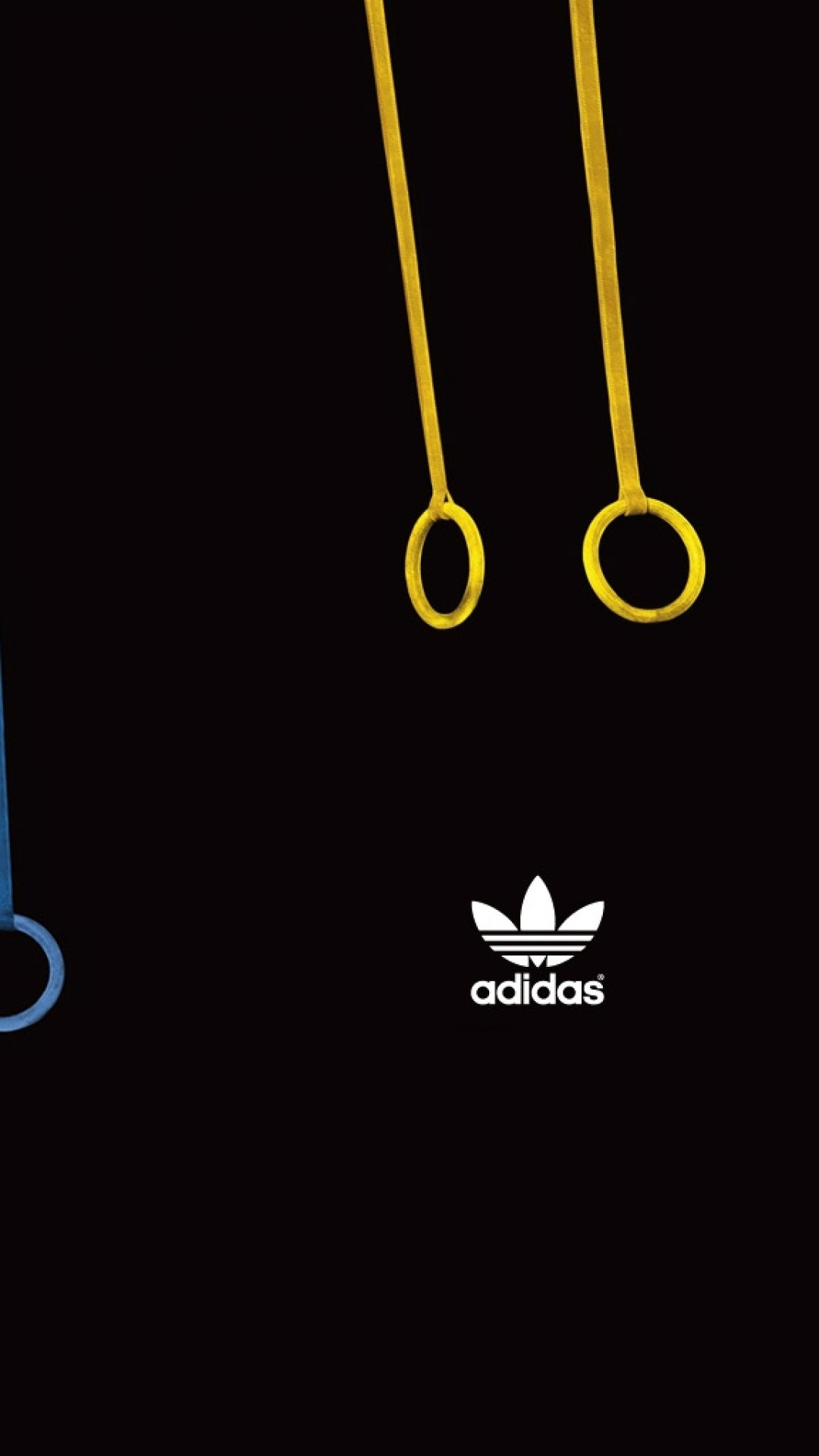 Preview wallpaper adidas, rope, multicolored, rings, sports 1080×1920