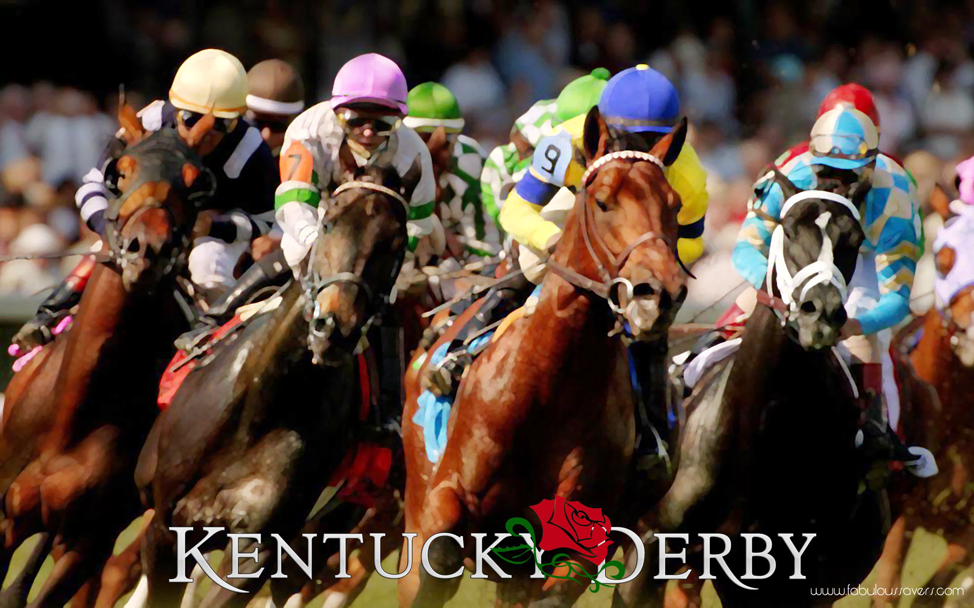 Roses Kentucky Derby, computer desktop wallpapers, pictures, images .