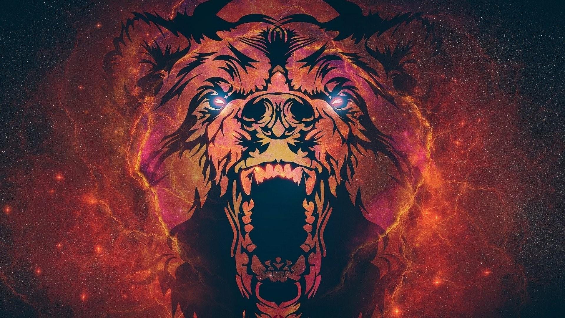 xpx Bear Wallpaper wallpaper for desktop