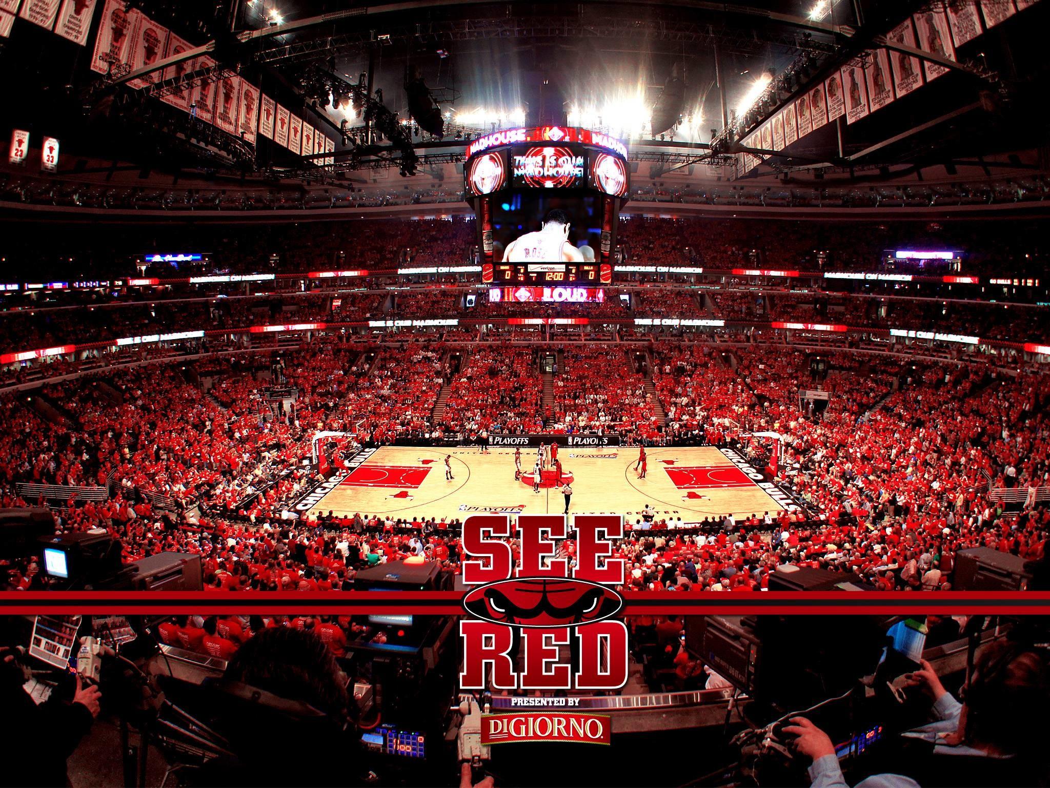 Chicago Bulls Backgrounds.