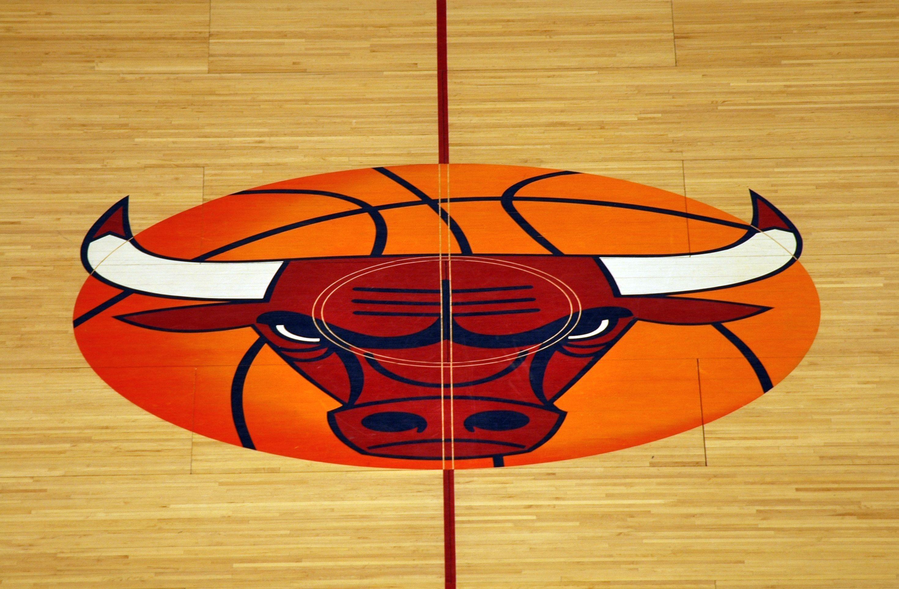 Chicago Bulls Logo wallpaper 46947