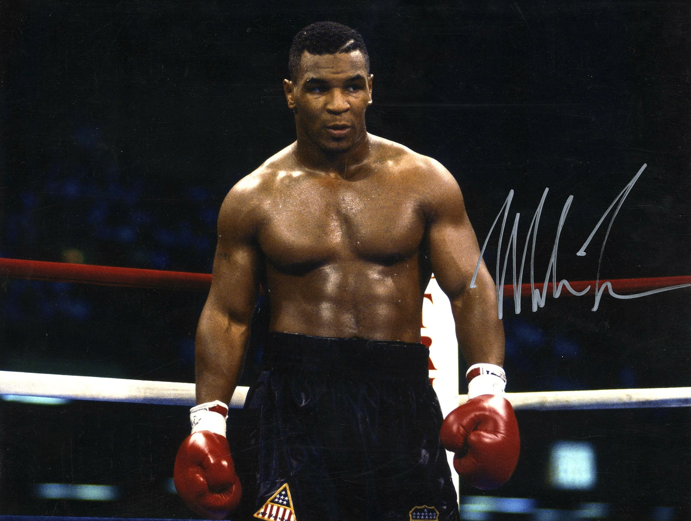 Boxing Mike Tyson Knockout Wallpapers Desktop Background