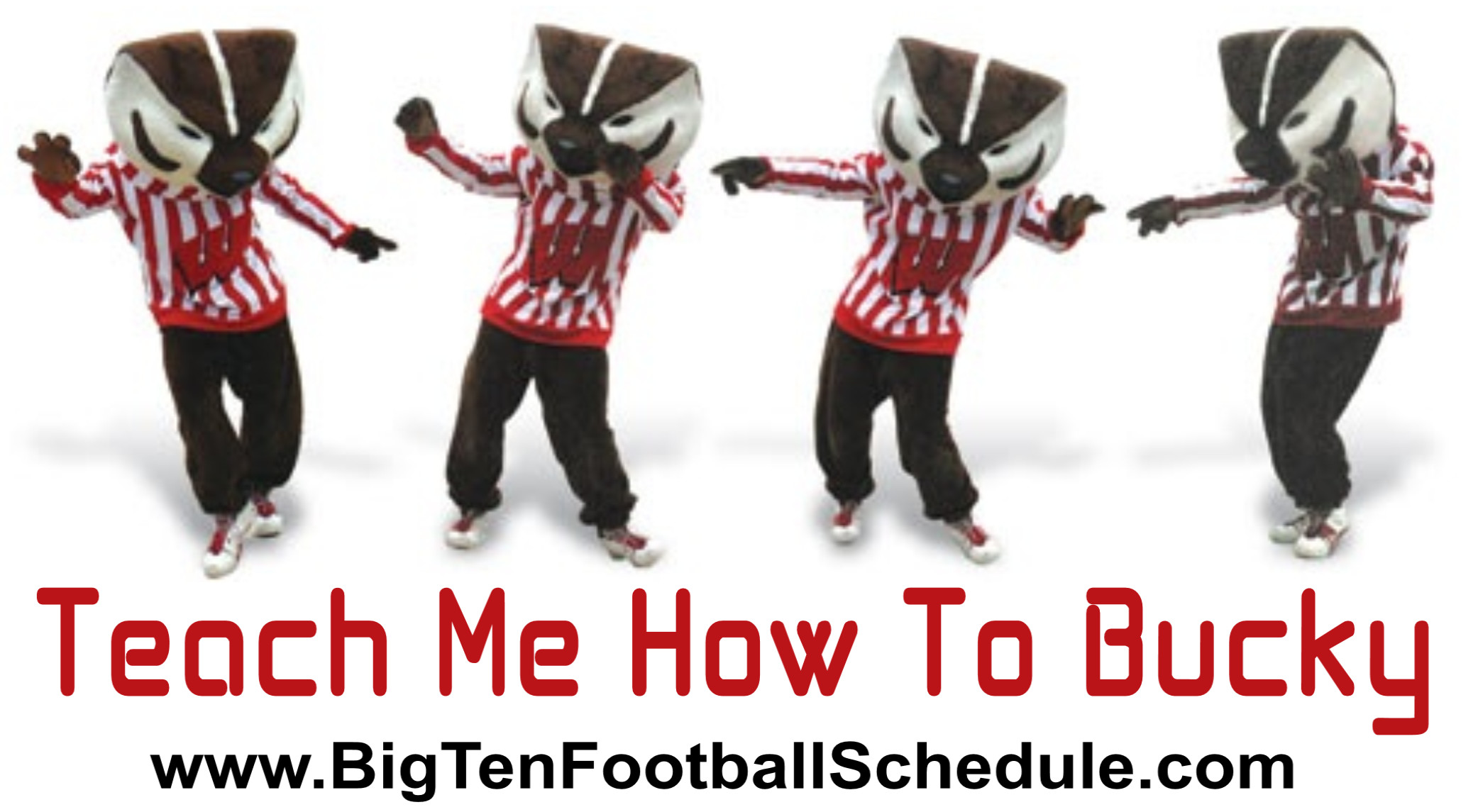 Explore Wisconsin Badgers, Bucky, and more!