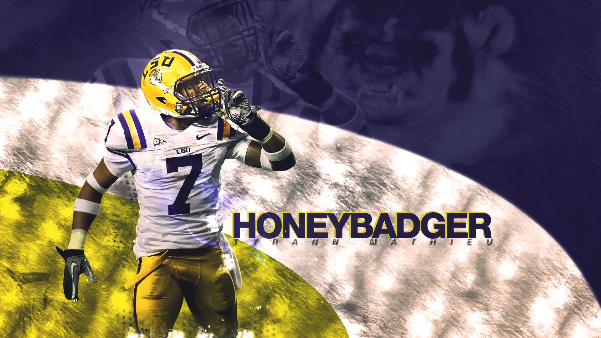 Honey Badger by JRed12 on deviantART