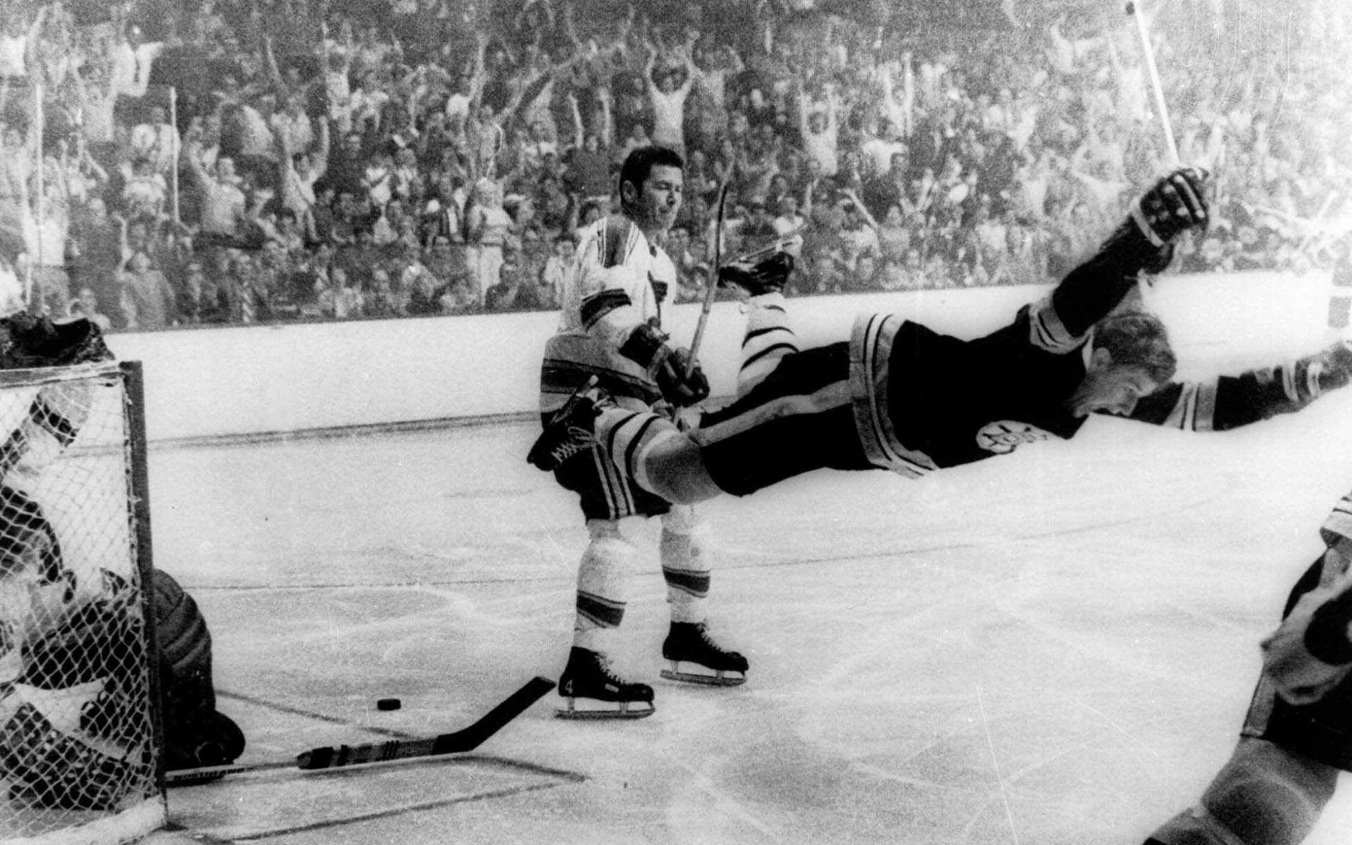 Hockey st louis blues boston bruins f wallpaper