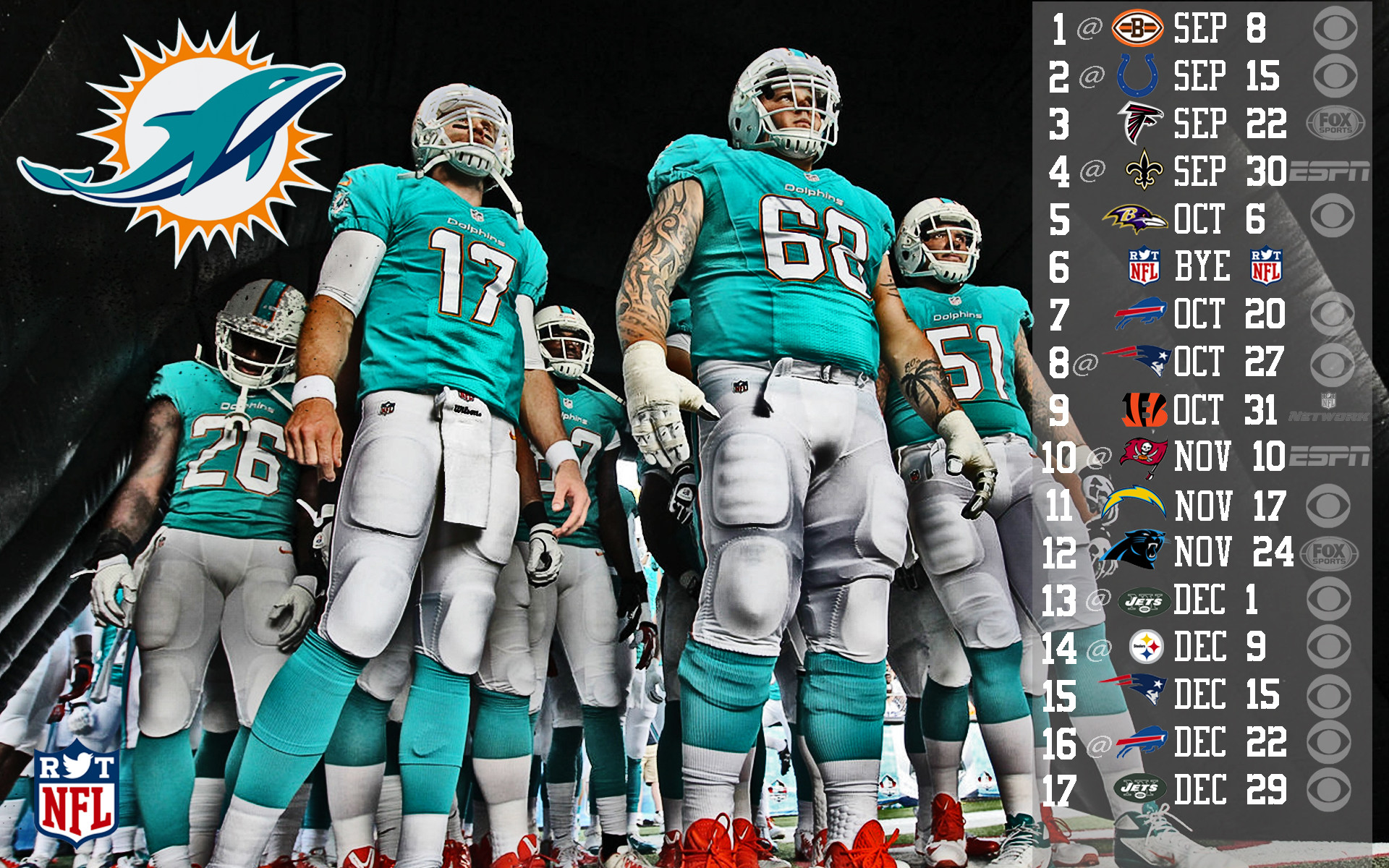 2013 Miami Dolphins football nfl g wallpaper     130415    WallpaperUP