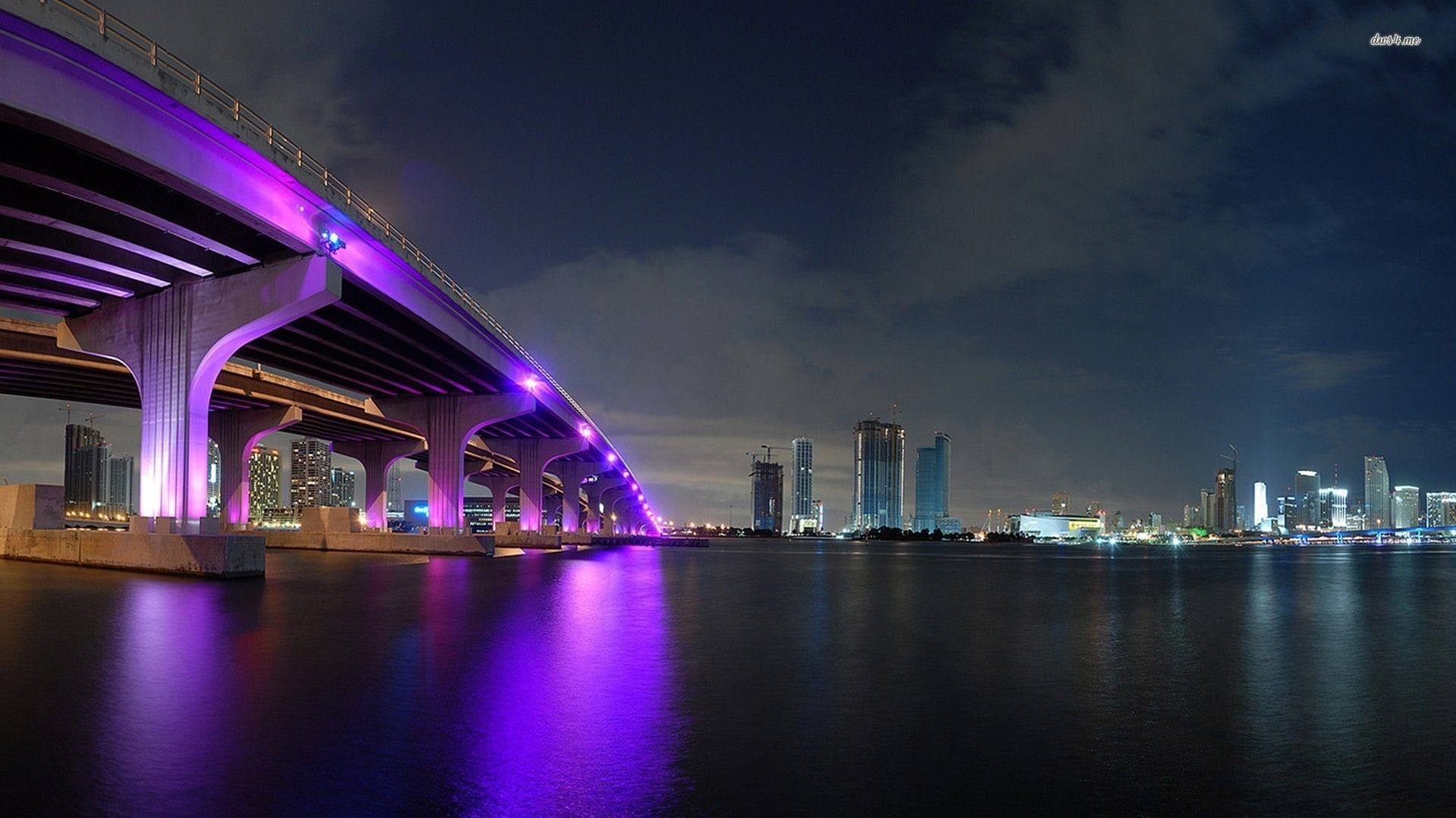 Miami City Pics