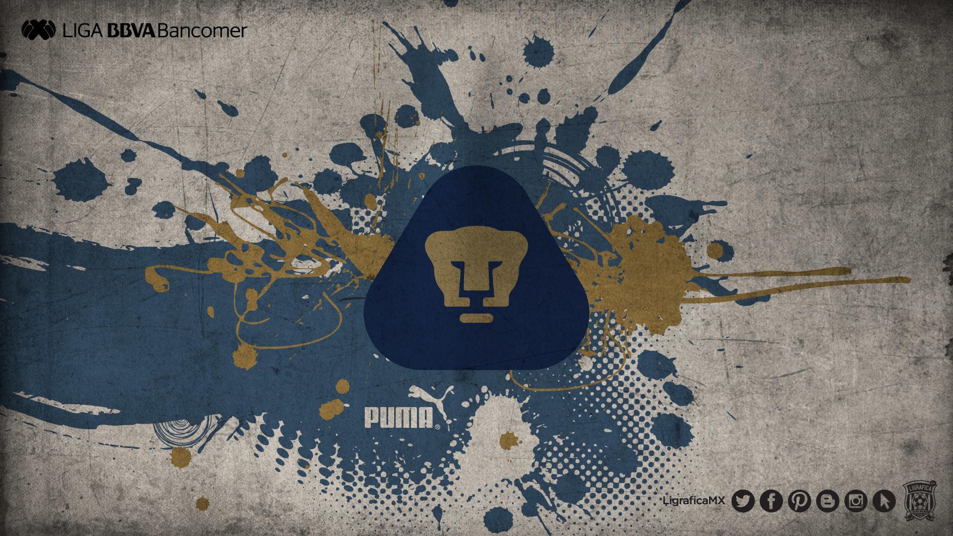 Pumas UNAM • LigraficaMX • 280214CTG(1) | pumas wallpaper | Pinterest |  Pumas