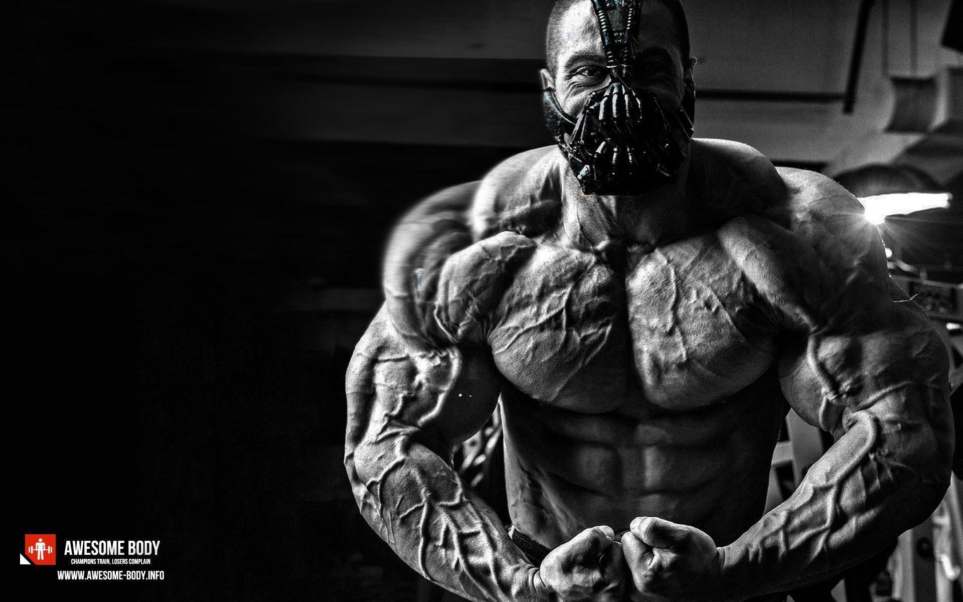 Bodybuilding Wallpaper Bodybuilding Hd Wallpapers Hd Wallpapers 360