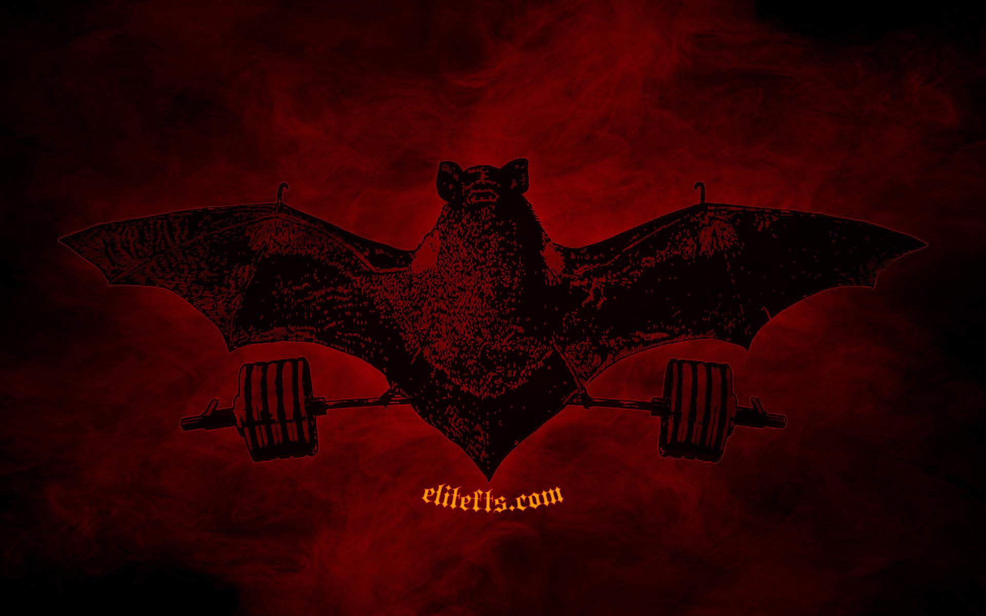 bat-wallpaper