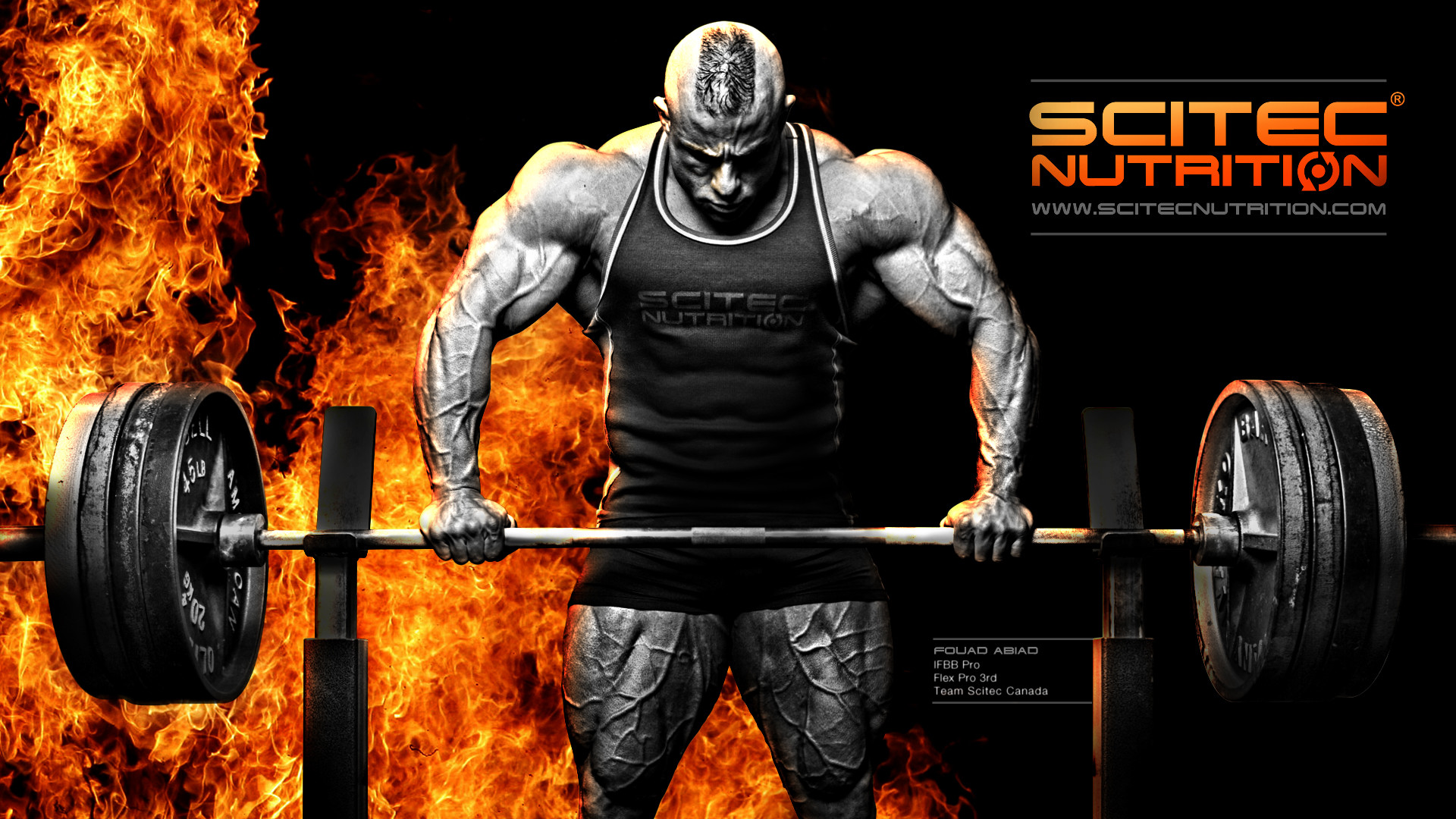 Scitec Nutrition Wallpaper | Fouad Abiad | Fitness & Bodybuilding  Sportnahrung | Pinned https:/