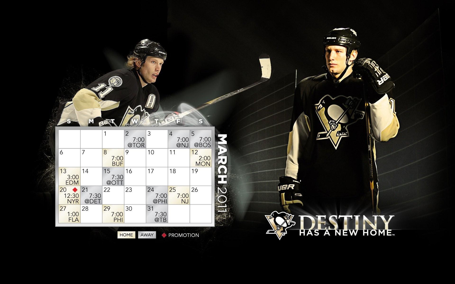 Pittsburgh Penguins 282598