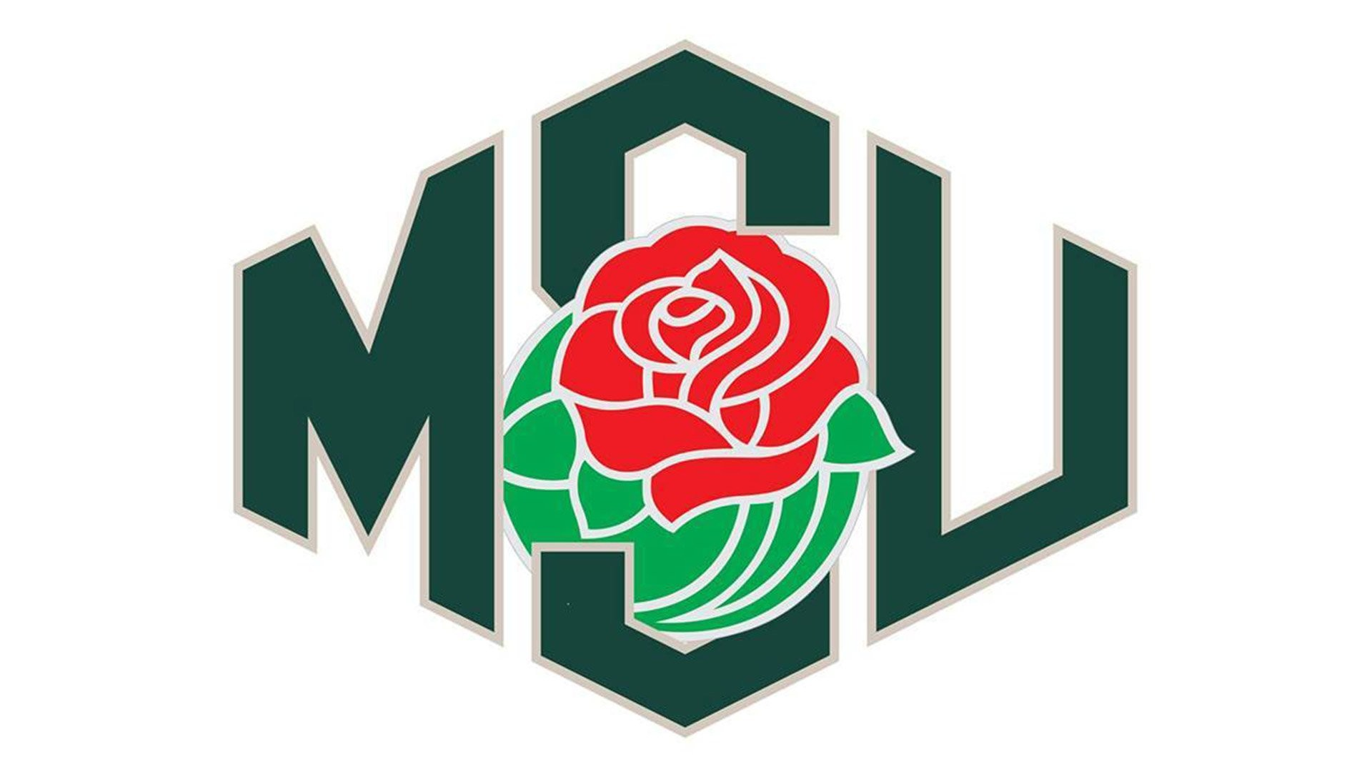 MICHIGAN STATE SPARTANS college football wallpaper background