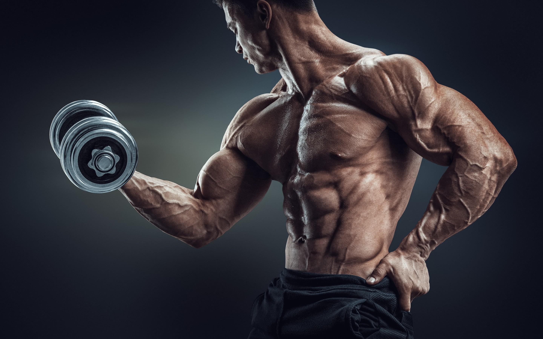 … workout bodybuilder wallpapers 1040273 …