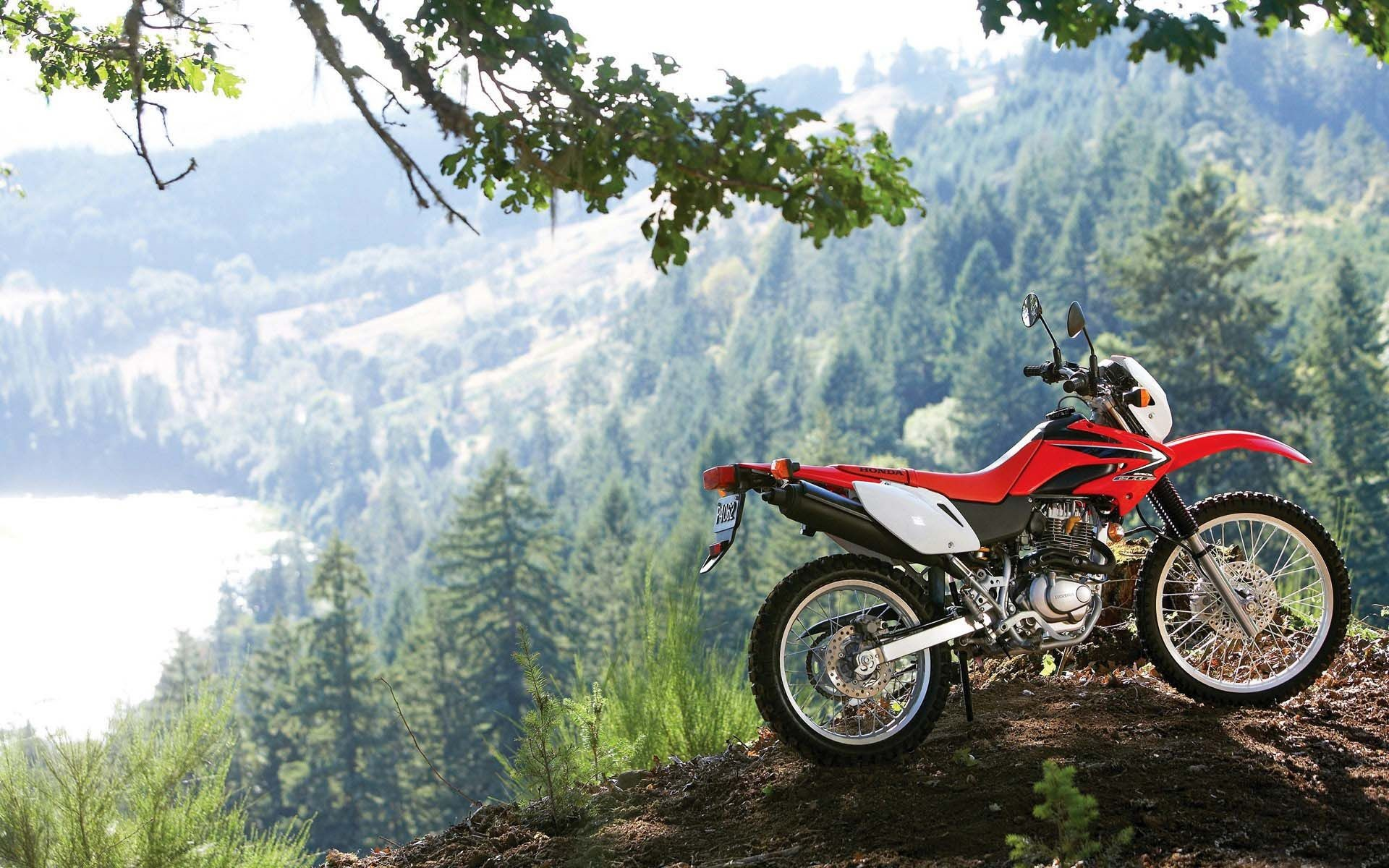 Honda CRF – Ultimate Dirt Bike!
