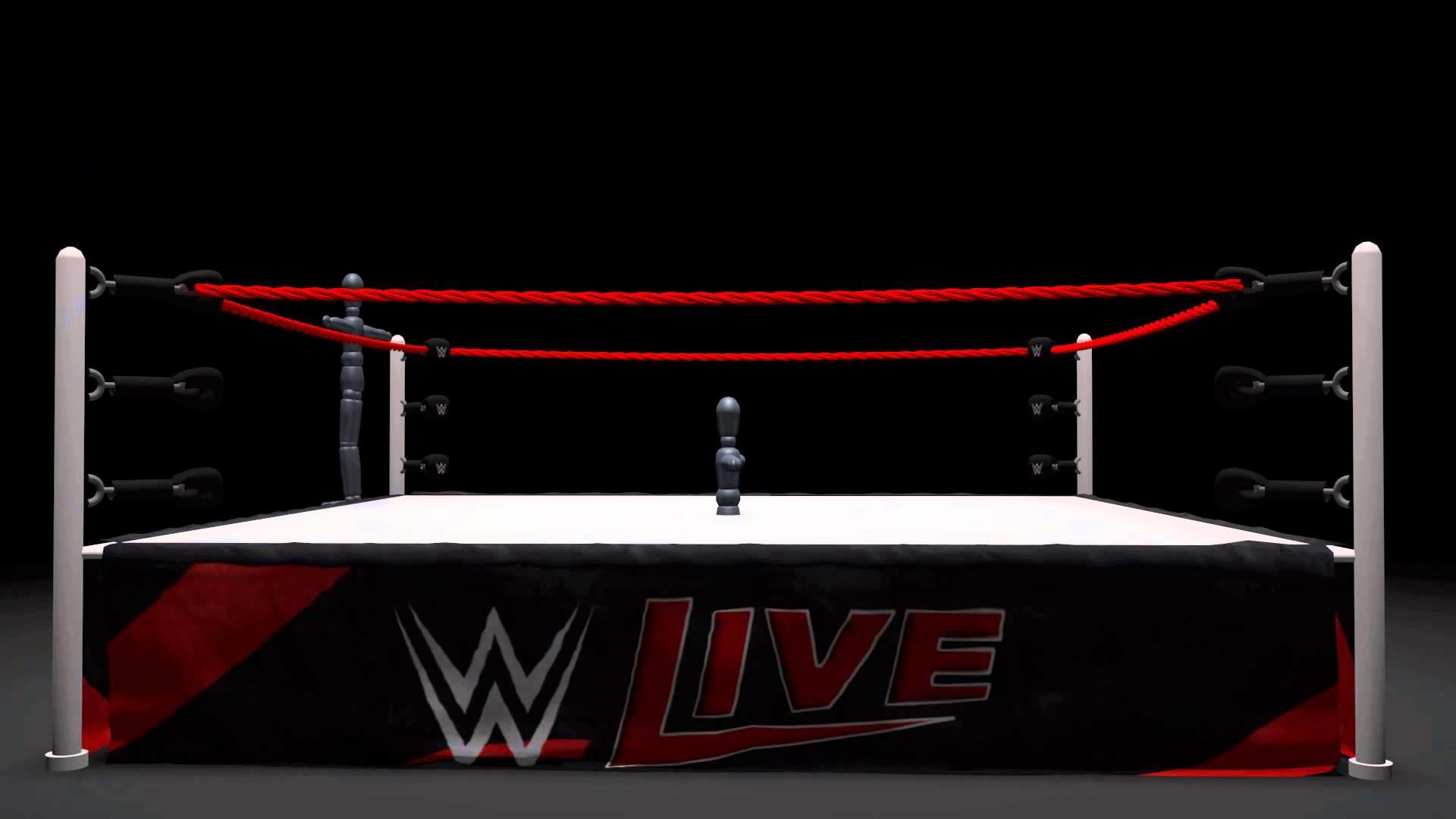 Wrestling Ring Simulation -WIP