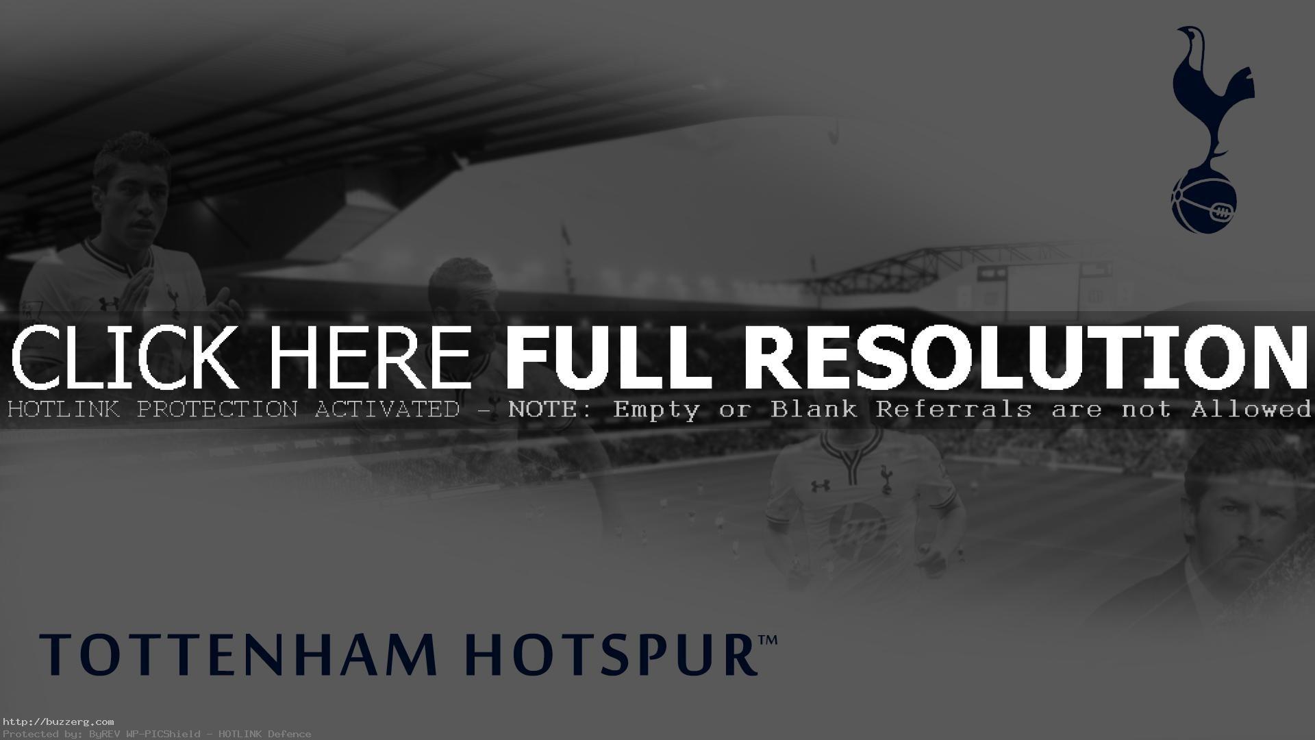 BPL Team Tottenham Hotspur (id: 138668)