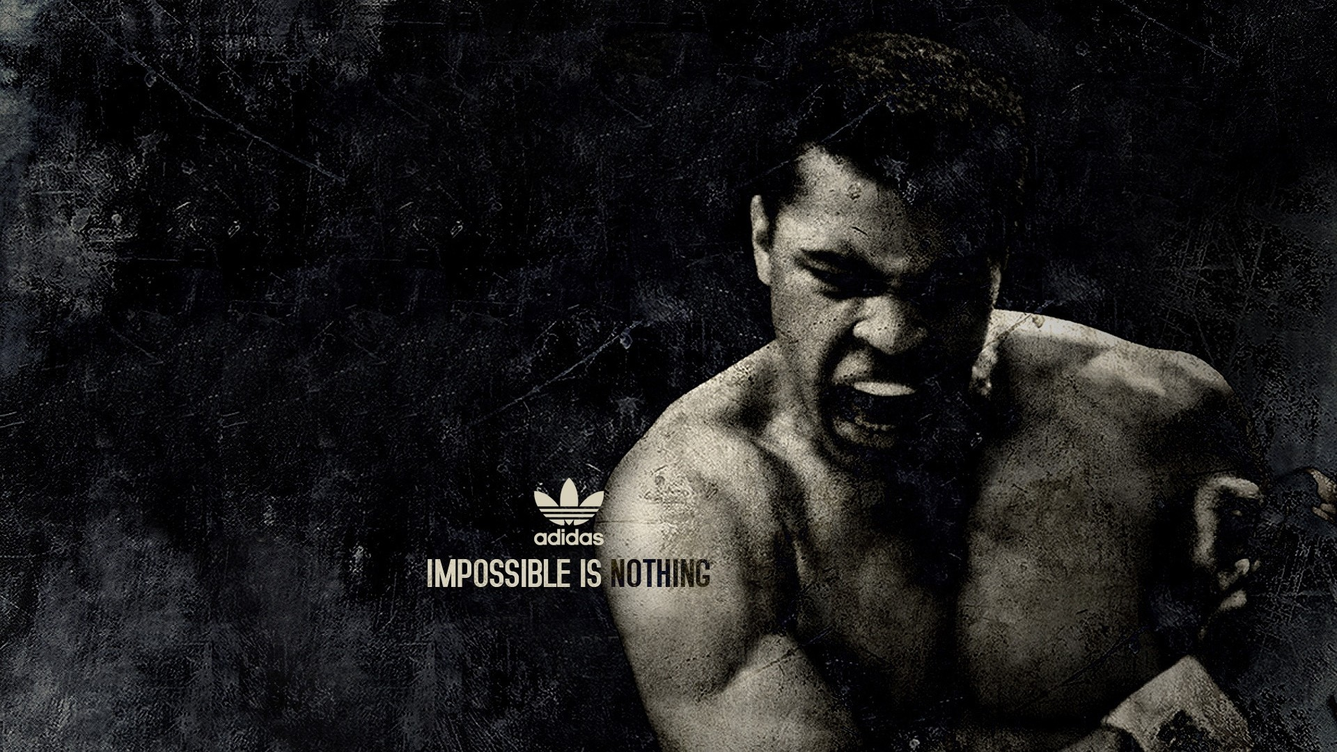 Preview wallpaper muhammad ali, boxer, sports, adidas 1920×1080