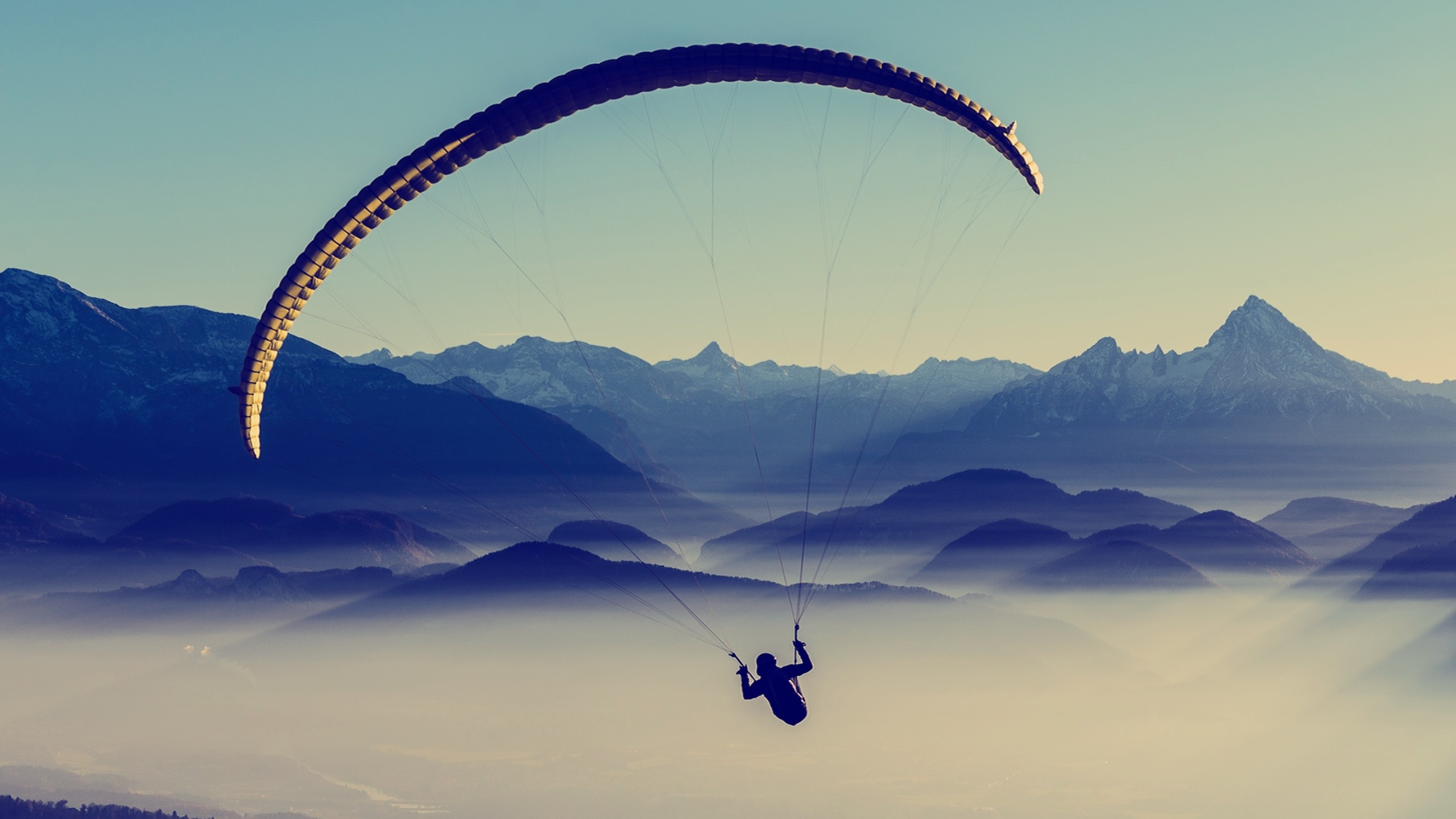 Preview wallpaper paragliding, sky, flight 2560×1440