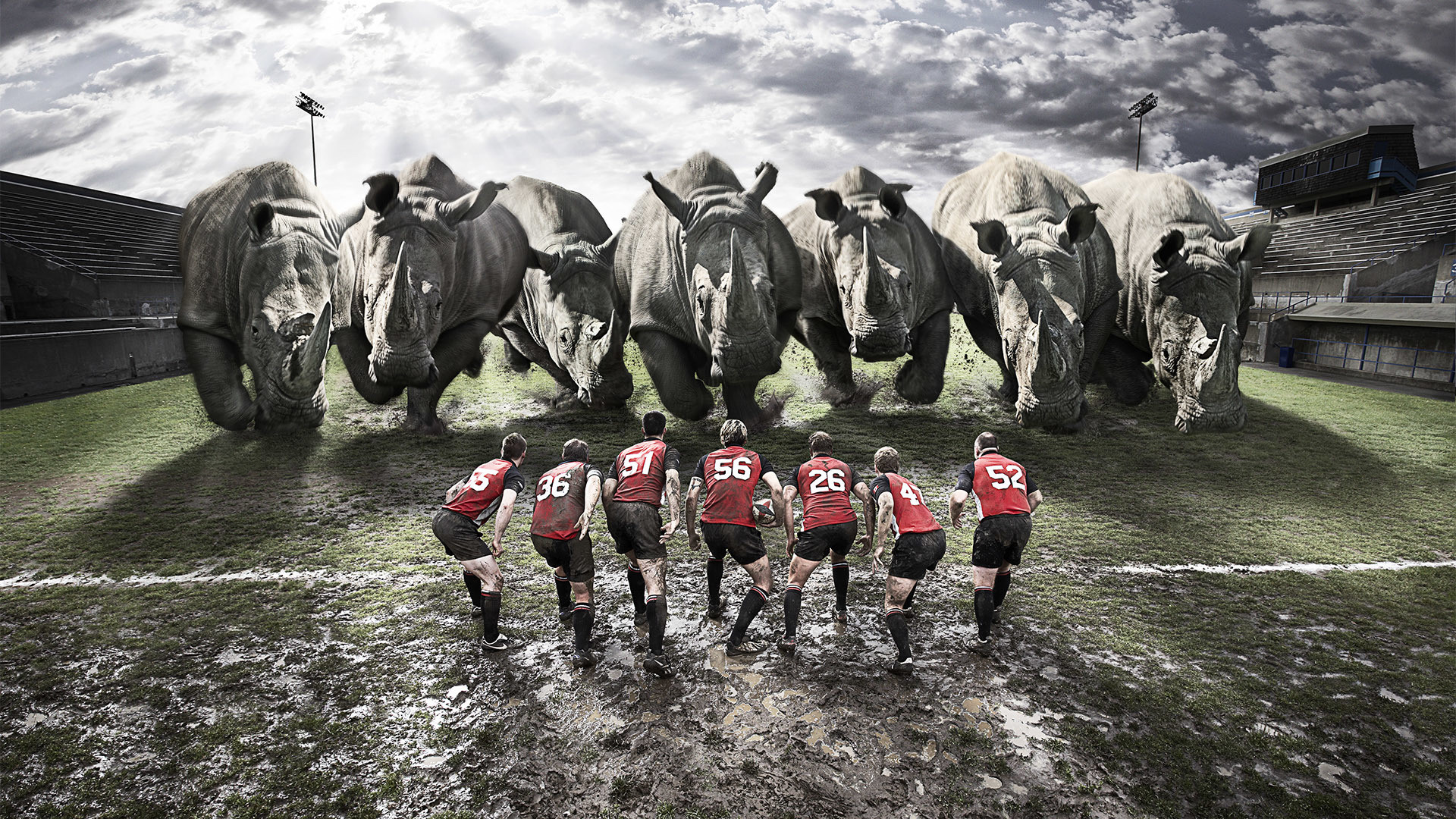 Preview wallpaper rugby, team, rhinos, dirt, field 1920×1080