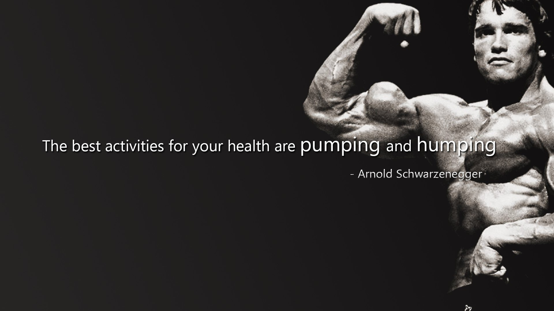 muscle muscles weight lifting Bodybuilding (24) wallpaper background .