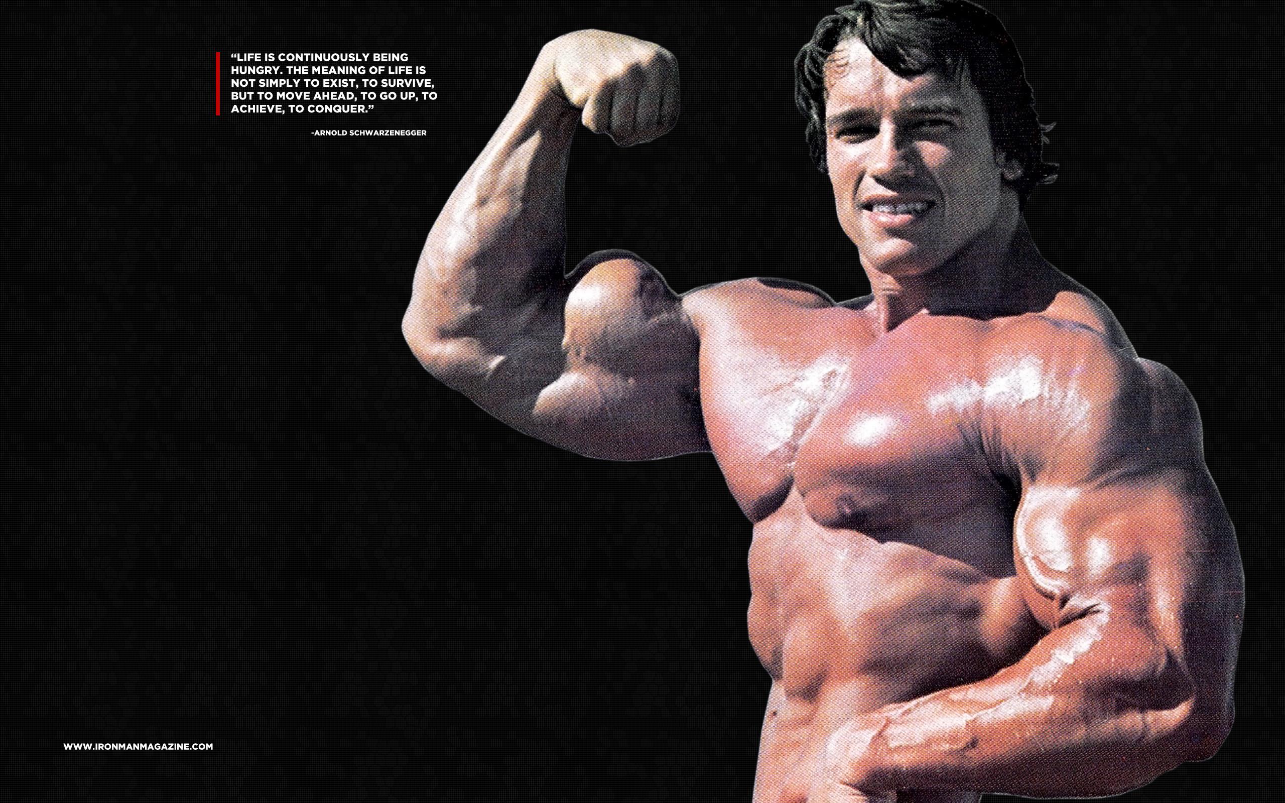 Arnold Schwarzenegger Desktop Wallpaper