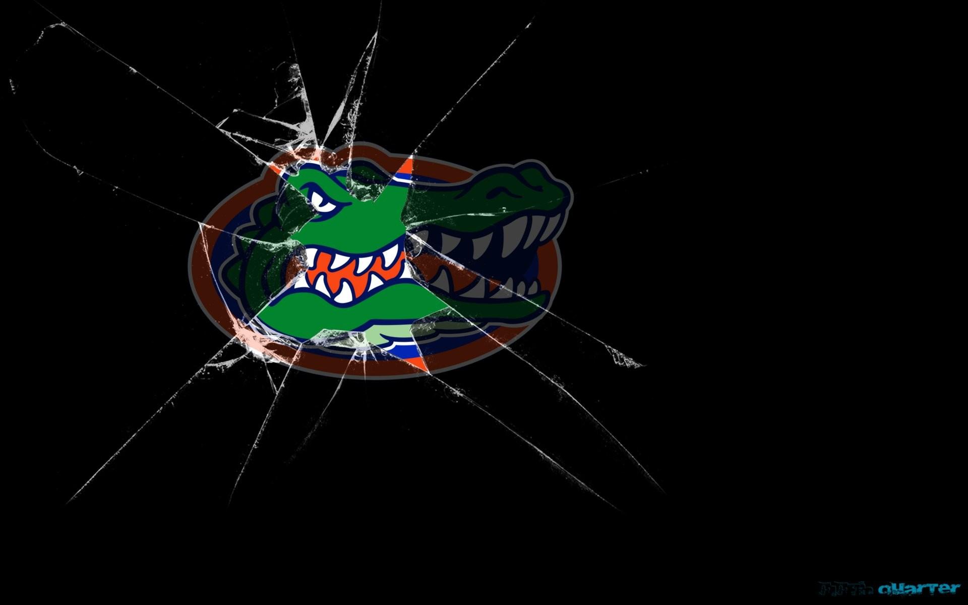 FLORIDA GATORS college football wallpaper     595483 .