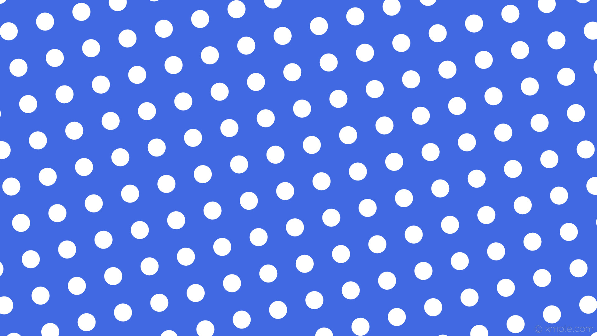 wallpaper blue polka dots white spots royal blue #4169e1 #ffffff 195° 58px  121px